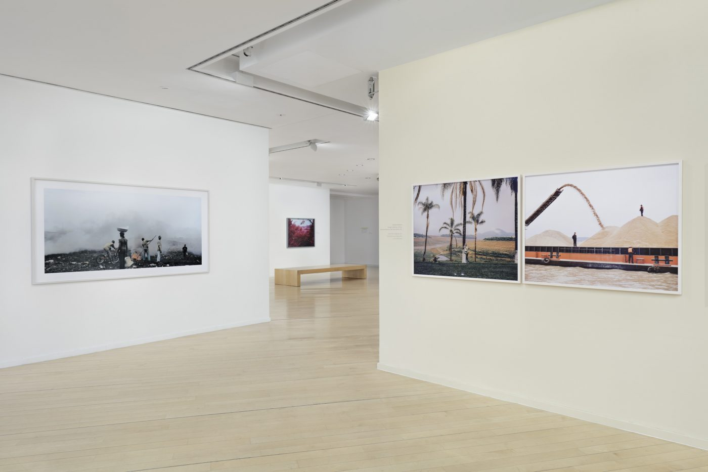 Group show, 'Evoking Reality' at Daimler Art Collection, Berlin, Germany.    4 — 109 x 90 cm, inkjet, editioned    1 — 200 x 172 cm, lightbox    Artists: Jane Alexander, Pieter Hugo, Richard Mosse, Vivianne Sassen, Guy Tillim.
