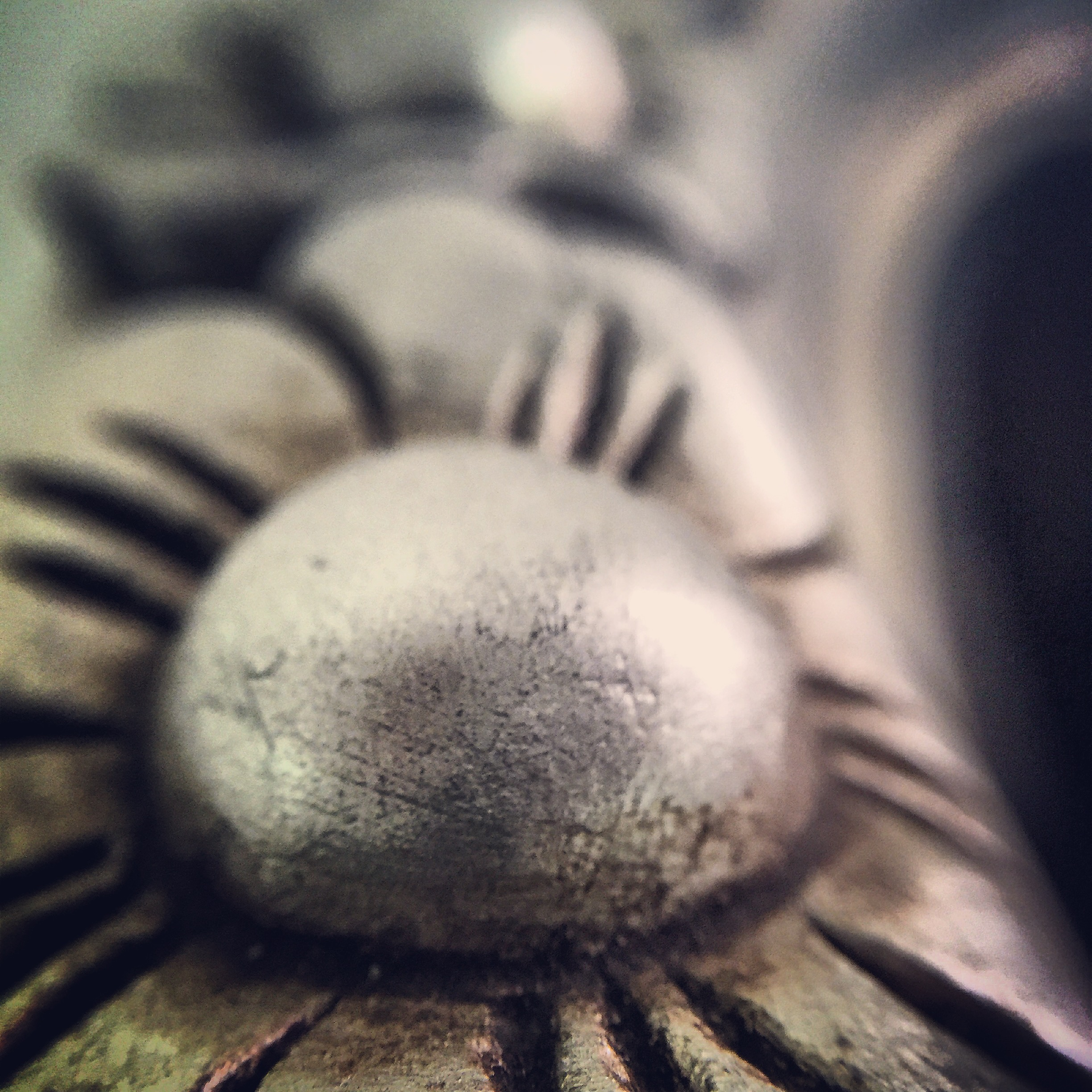 Macro photo, furniture detail
