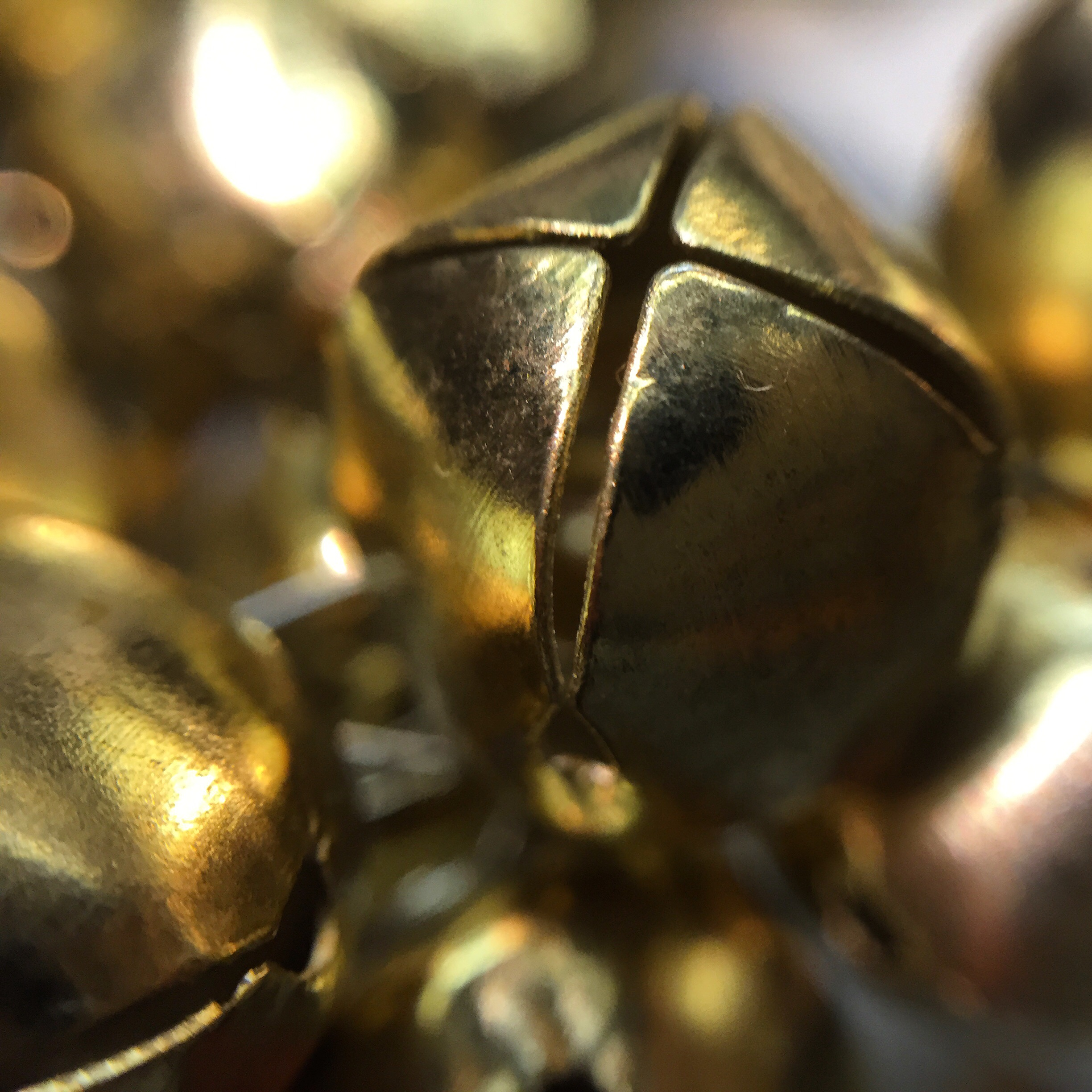 Macro photo, Jingle bells