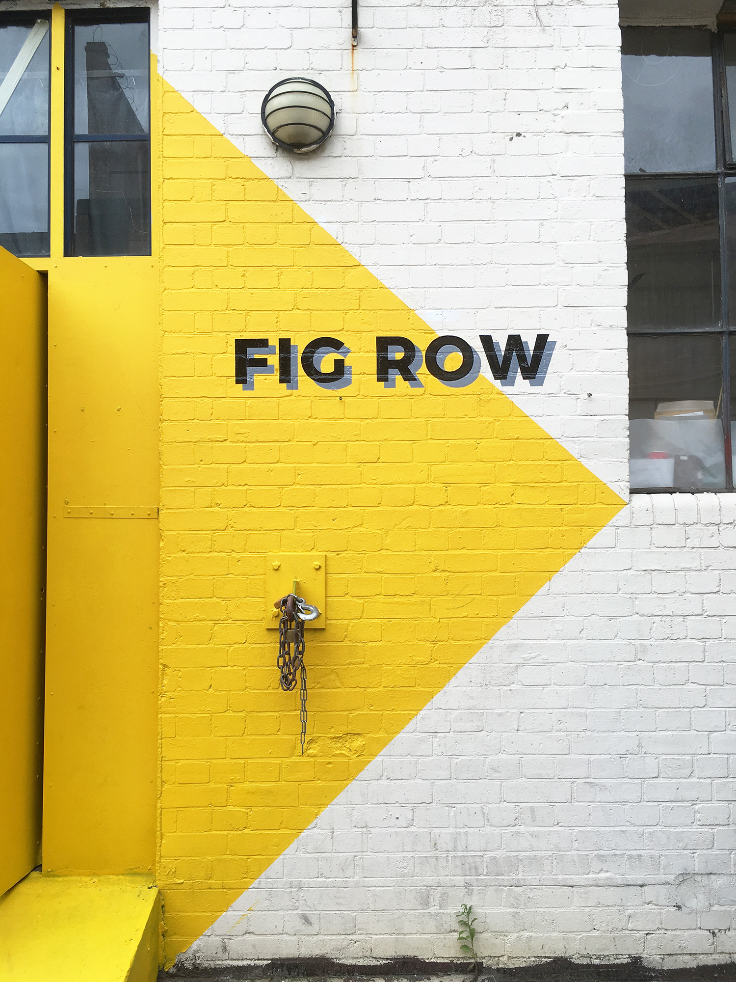 MOLU_FIG ROW 10.jpg