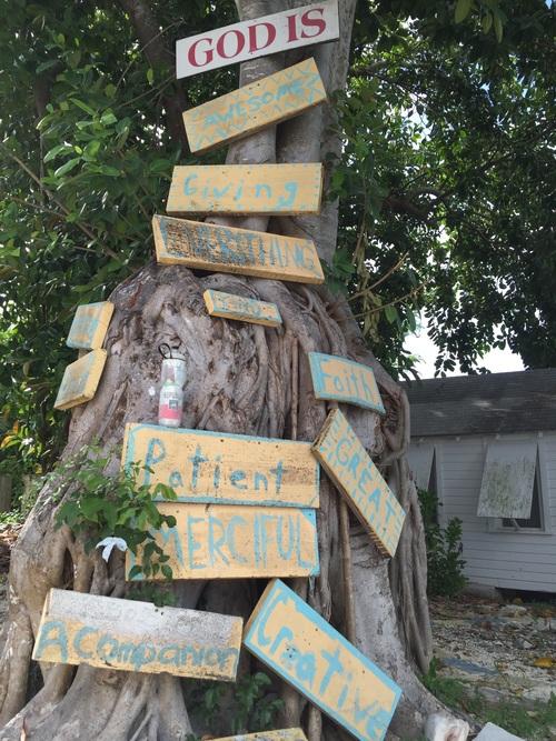 Inspirational Tree at All Saints Camp, Bahamas