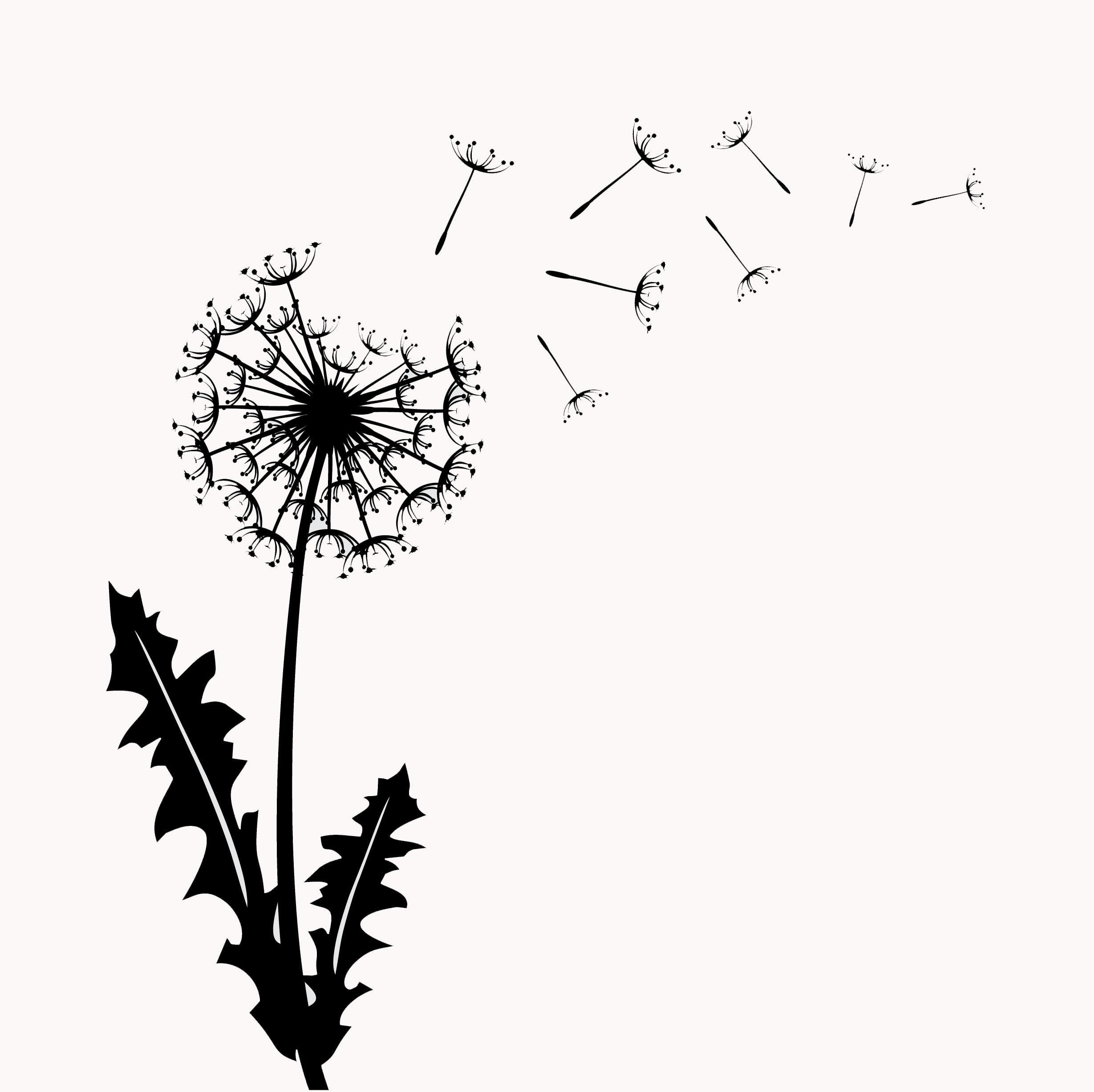Meet the Green Dandelion-2015-white backround.jpg