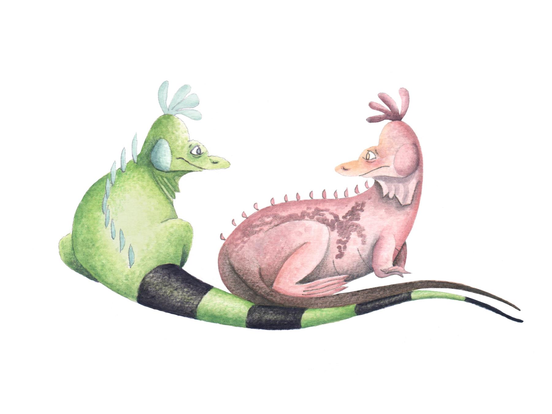 Pink Land Iguana