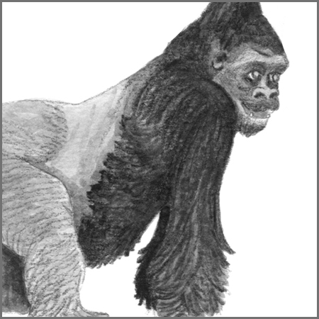 Little Animal Icons_Gorilla.jpg