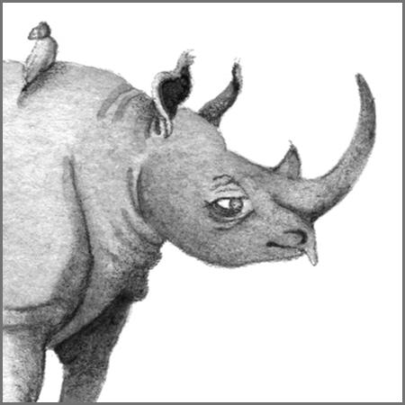 Little Animal Icons_Rhino.jpg