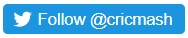 twitter follow button.jpg