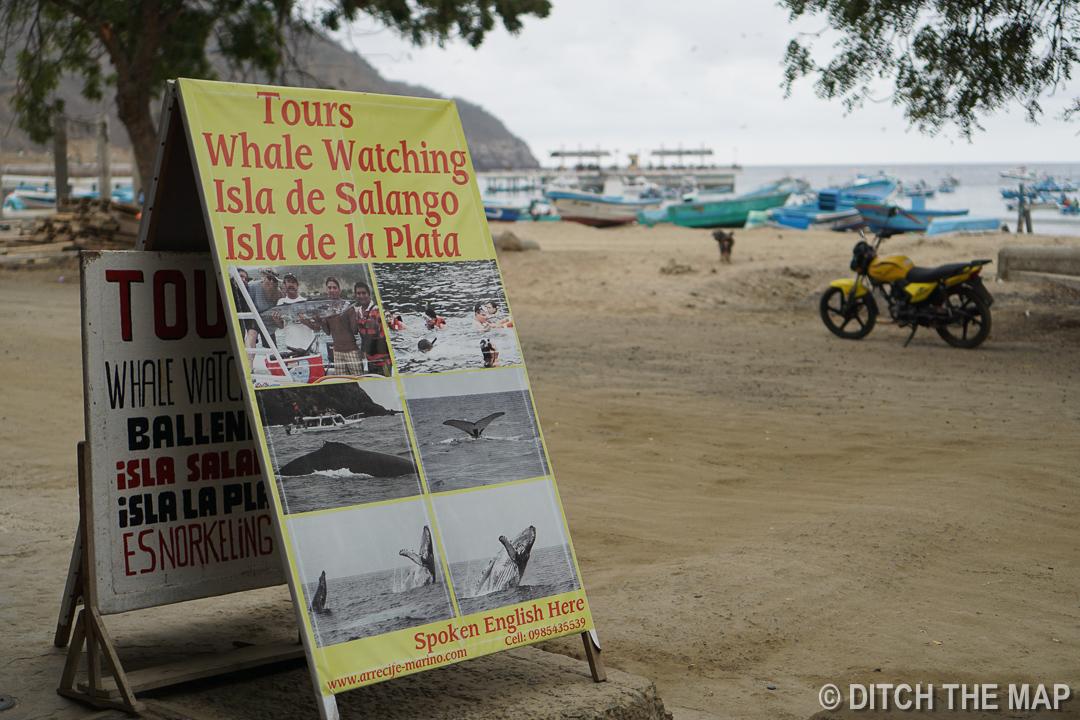 Our Tour in Puerto Lopez, Ecuador
