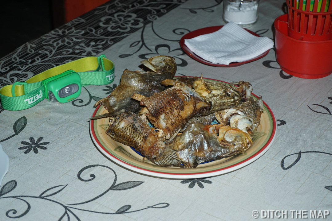 Eating the piranhas we caught in the rivers of The Pampas, Bolivia