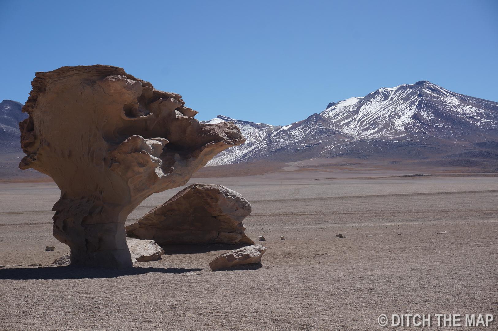 Arbol de Piedra in Salar de Uyuni, Bolivia