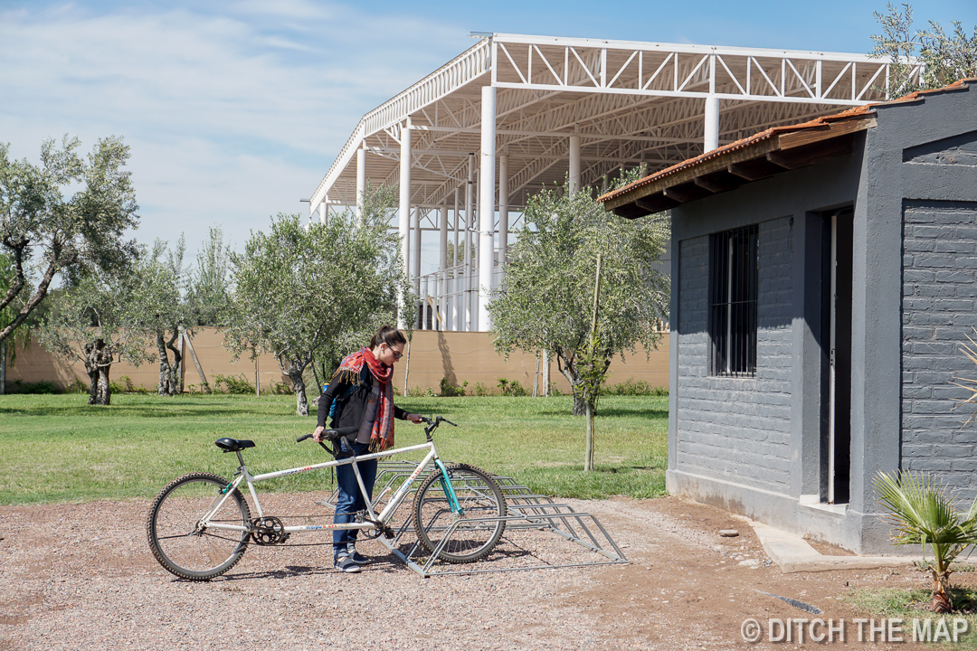 We rented a tandem to go up and down the 12km (8 mile)N calle de vino in Maipu, Argentina