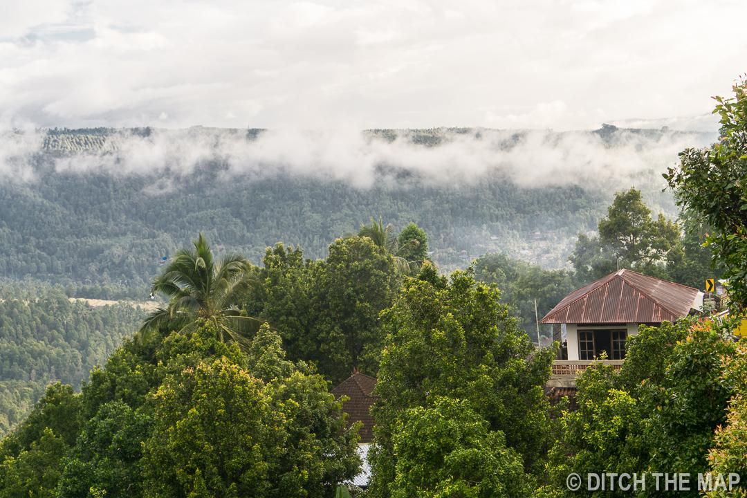 Enjoying the view while enjoying civet coffee in Munduk, Bali