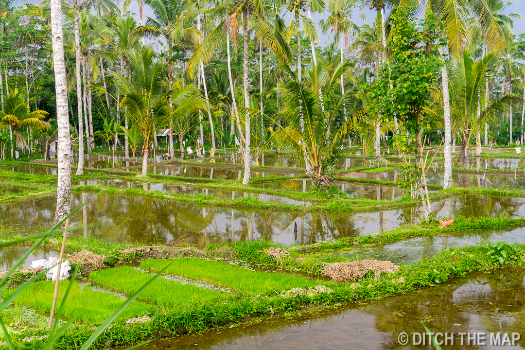 Ubud (Bali), Indonesia