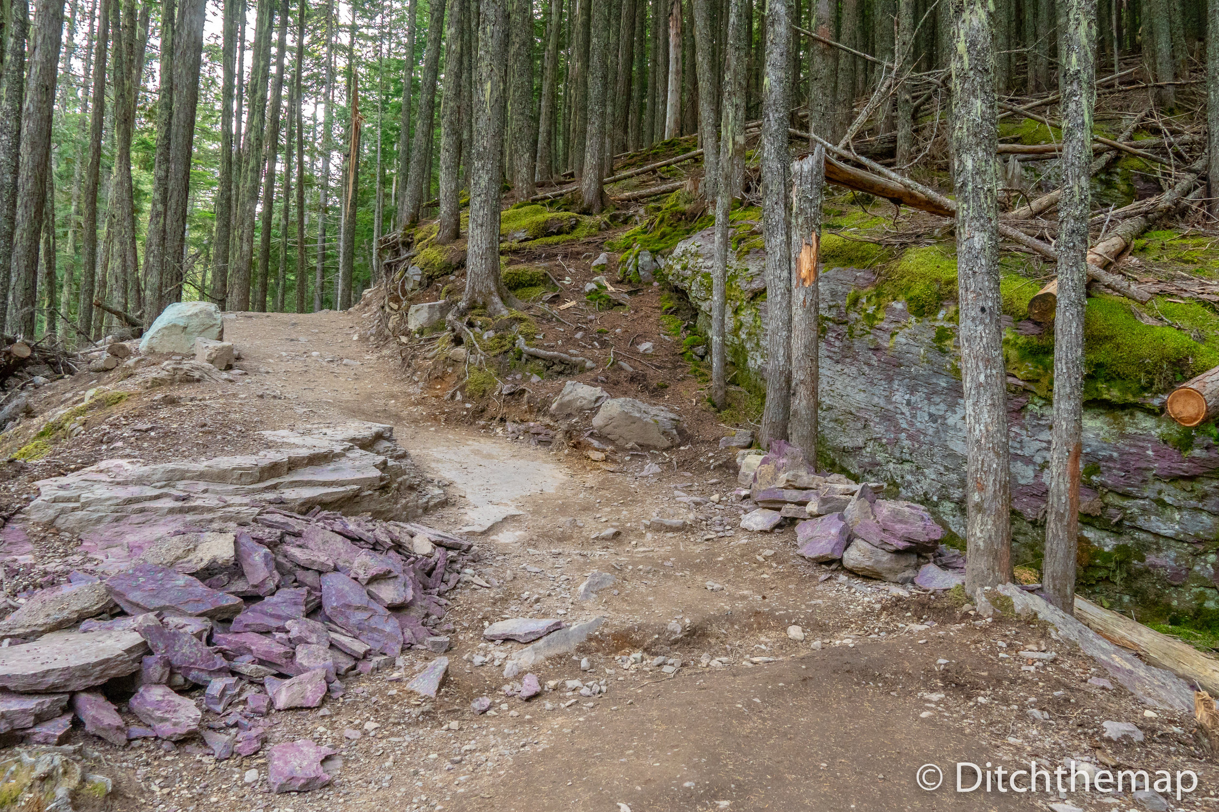 Purple rocks during out hike to Avalanche Lake, Glacier National Park, Montana