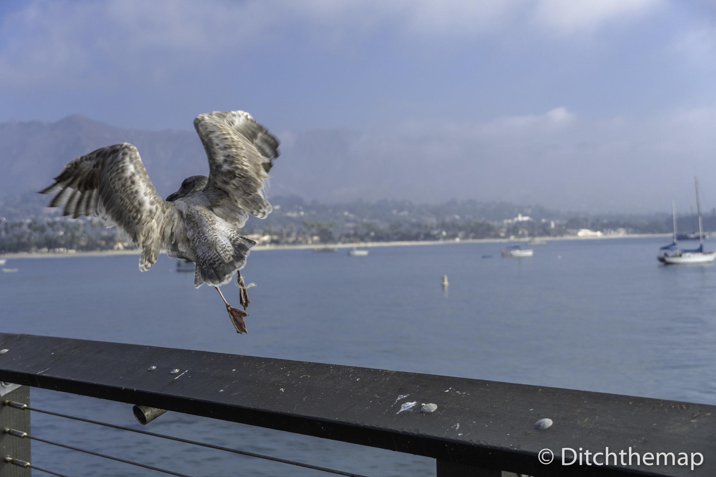 Downtown Santa Barbara - Central California Coastal City