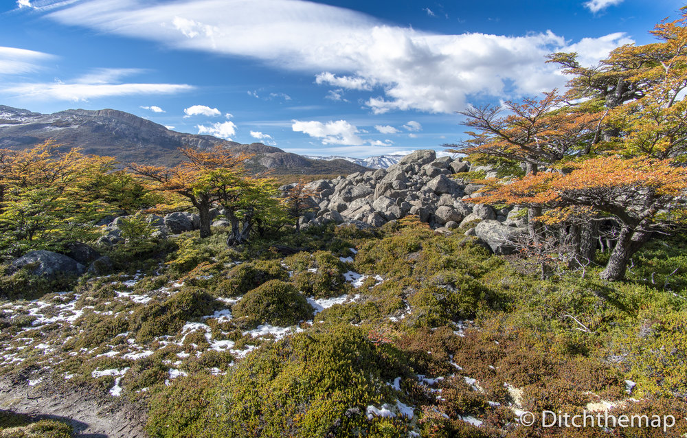Tres Lagos Hike to Mt. Fitz Roy, El Chalten