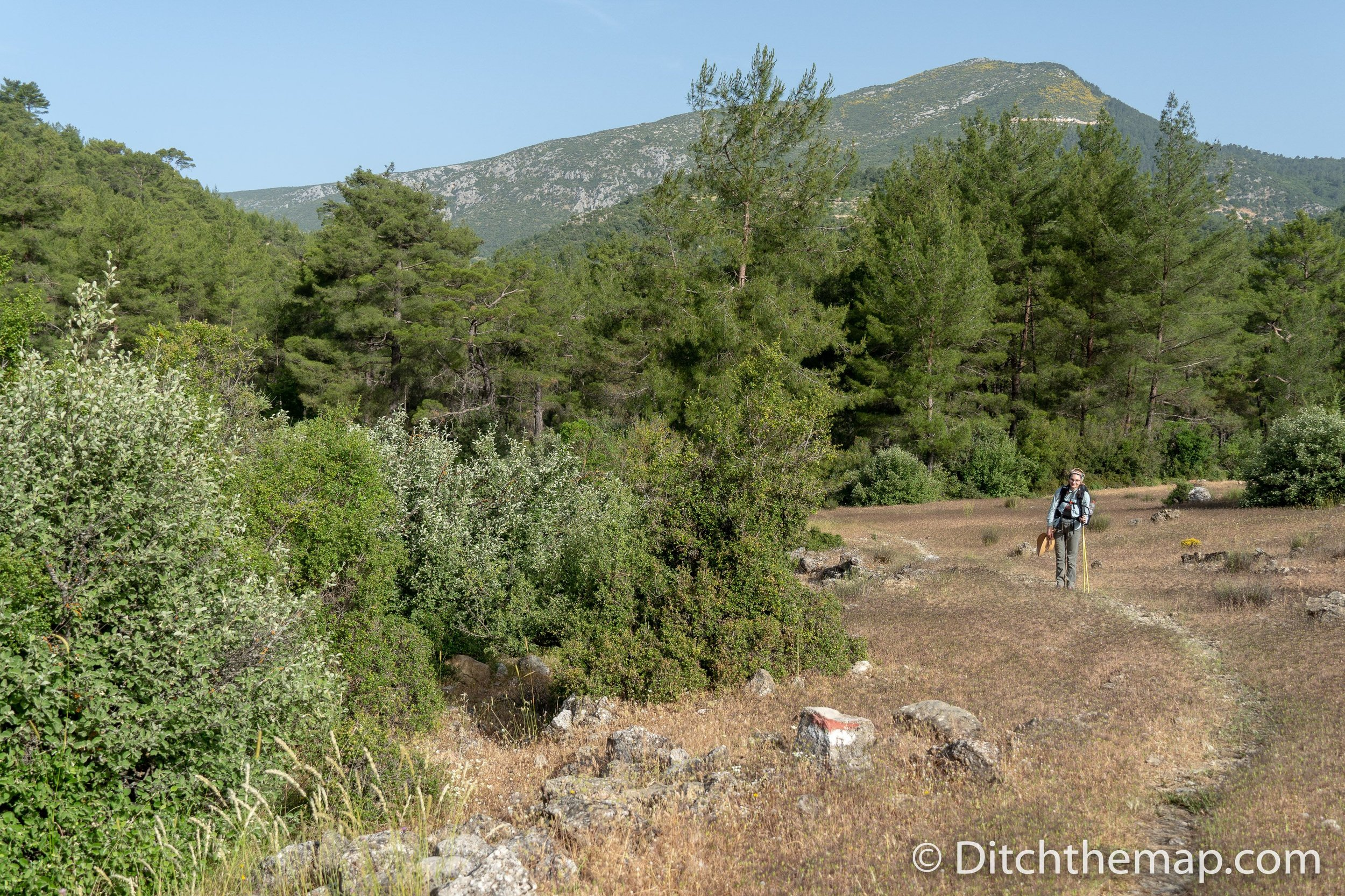 Emerging from a heavily forested uphill stretch on the lycian way