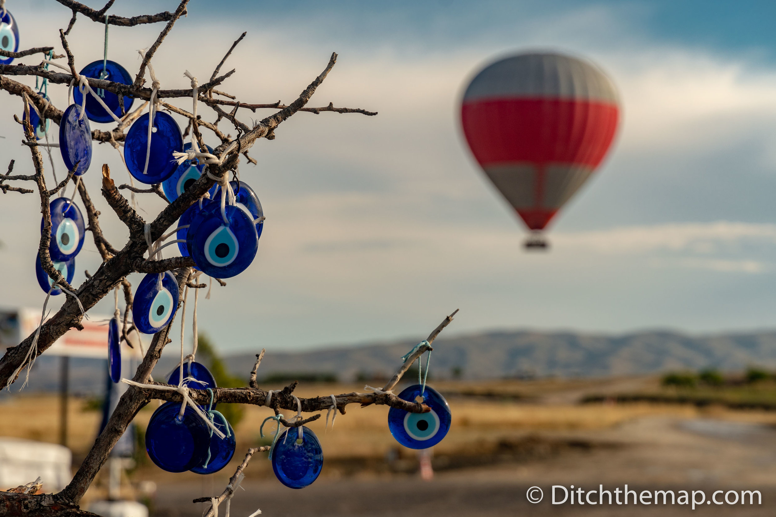 Evil Eye Tree with Hot Air Balloon in Bckground