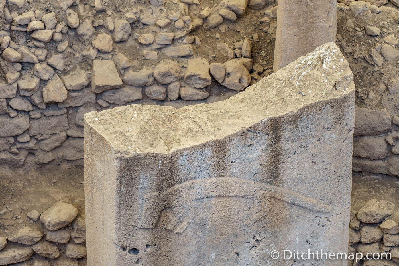 An animal engraving at Gobekli Tepe