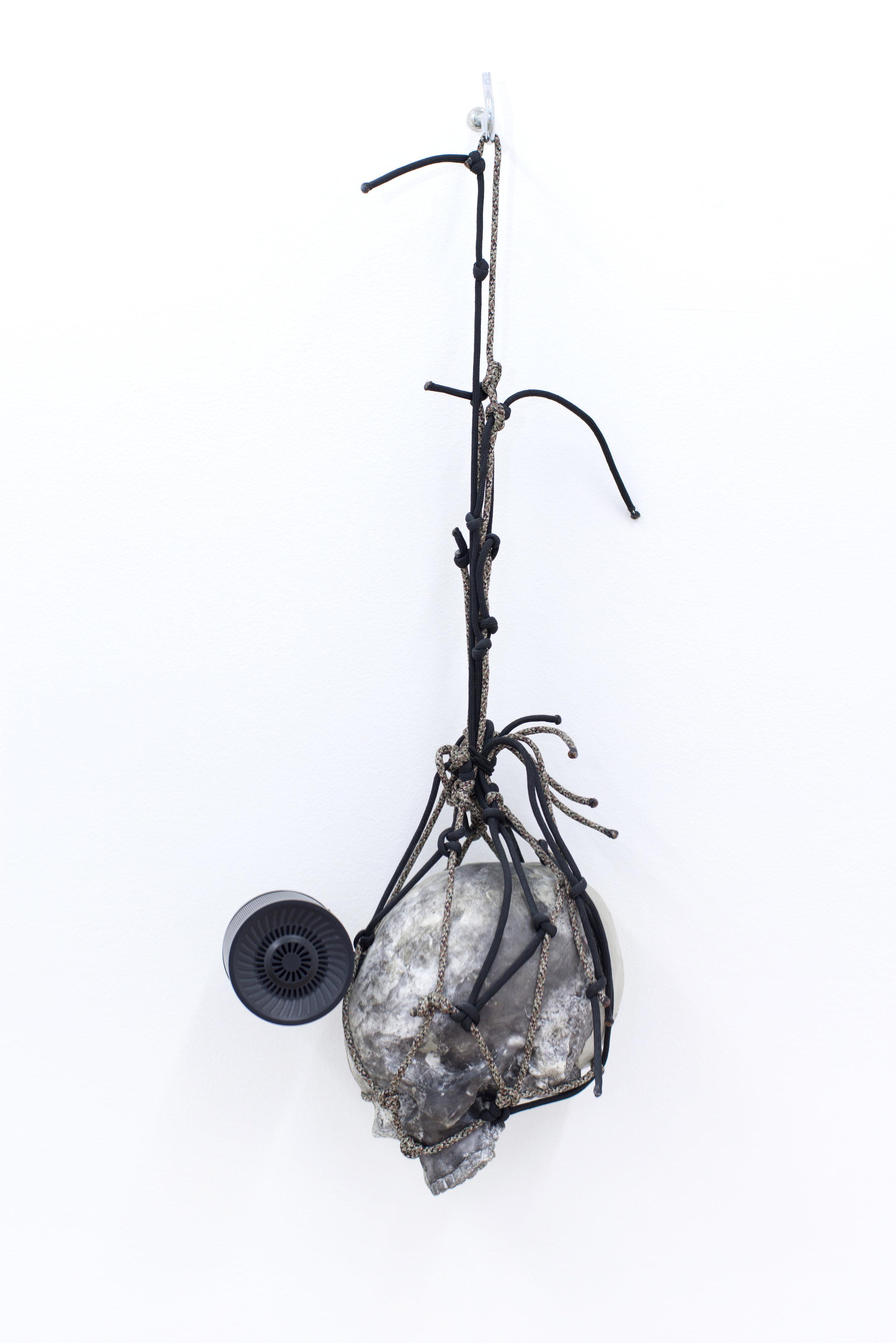 Ian Swanson   Birds, flies,  2016 Plastic, epoxy clay, carbon, USB flash drive, USB speaker, paracord, 9:48 audio loop