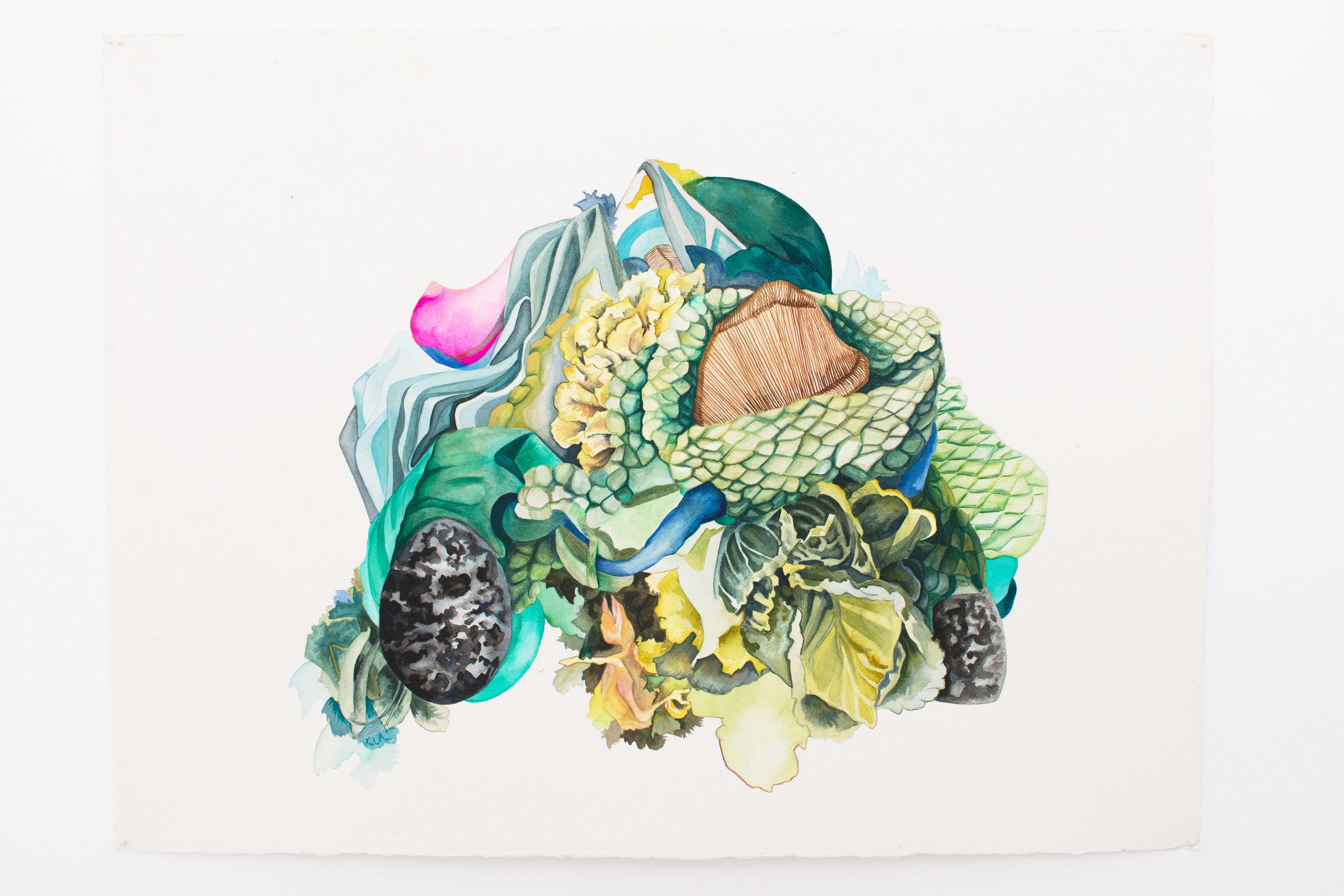 Sofia Ortiz   Fallen,  2017 Watercolor on paper 22 x 30 inches