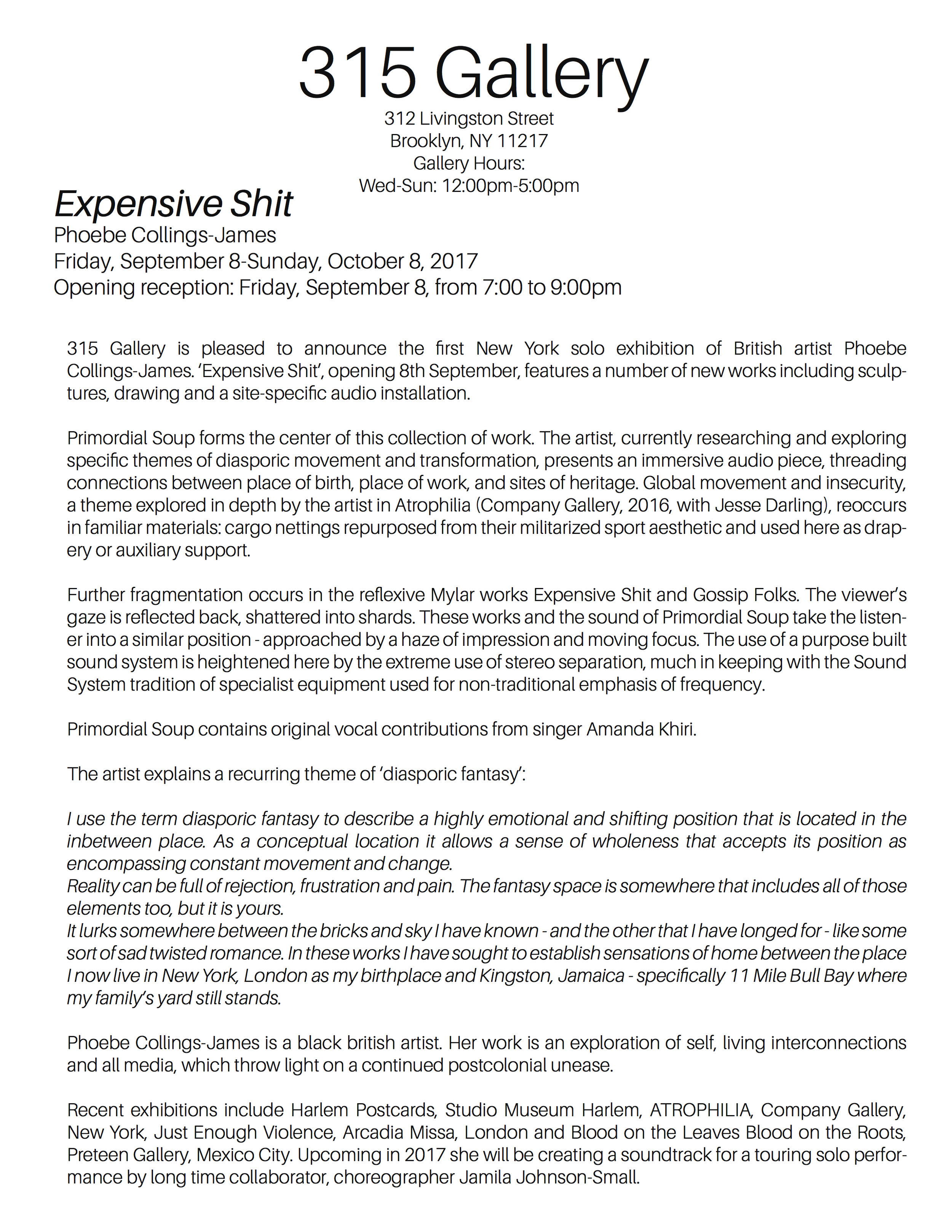 Expensive Shit Press Release.jpg