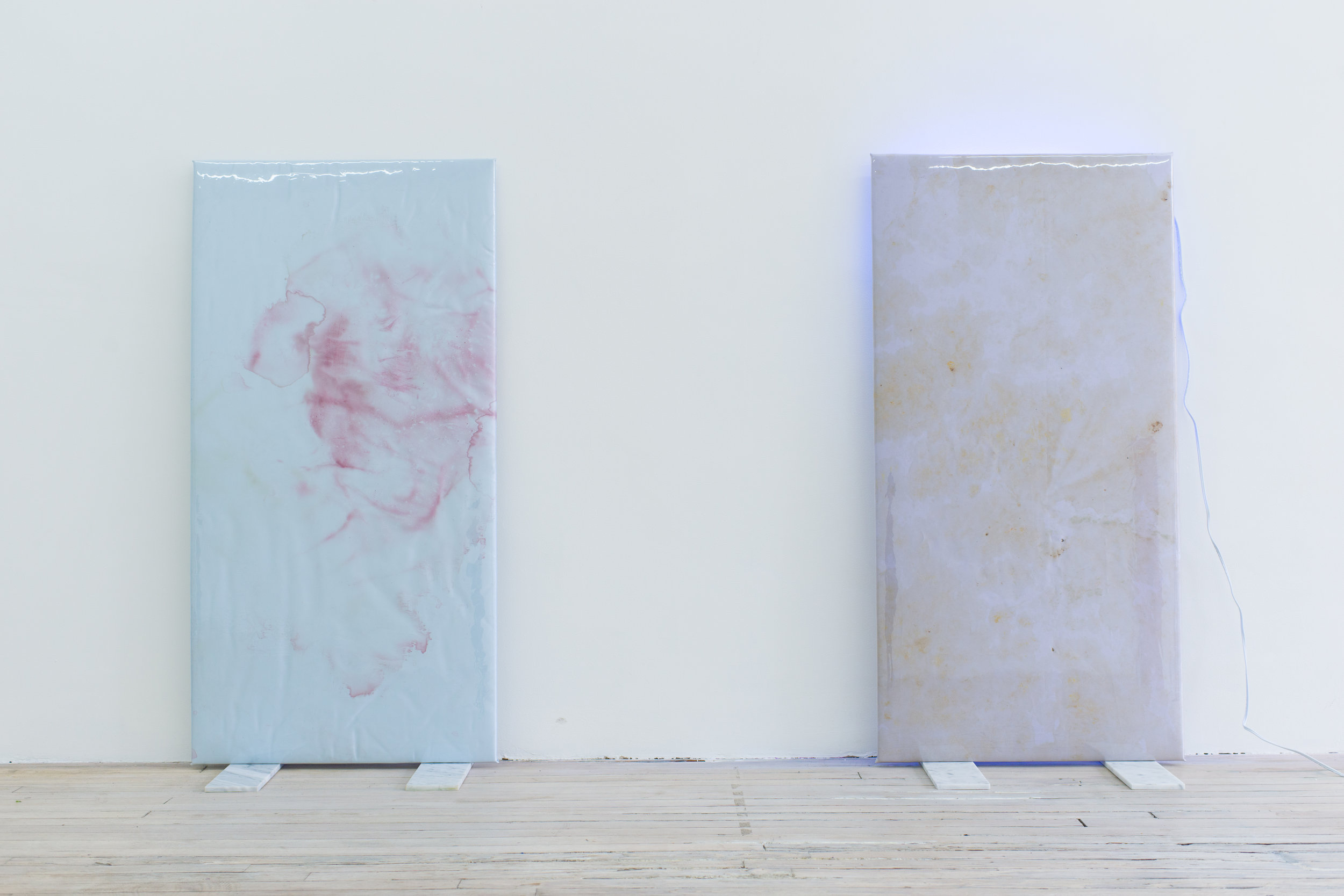 Quay Quinn Wolf   Selection No.1,  2018 Red carnation pigments on blue satin, padding, wood, soft PVC sheet, marble tiles 48 x 24 x 12 inches   Quay Quinn Wolf   Selection No.3,  2018 Lily pigments on lavender satin, padding, wood, soft PVC sheet, marble tiles, back lighting, extension cord 48 x 24 x 12 inches