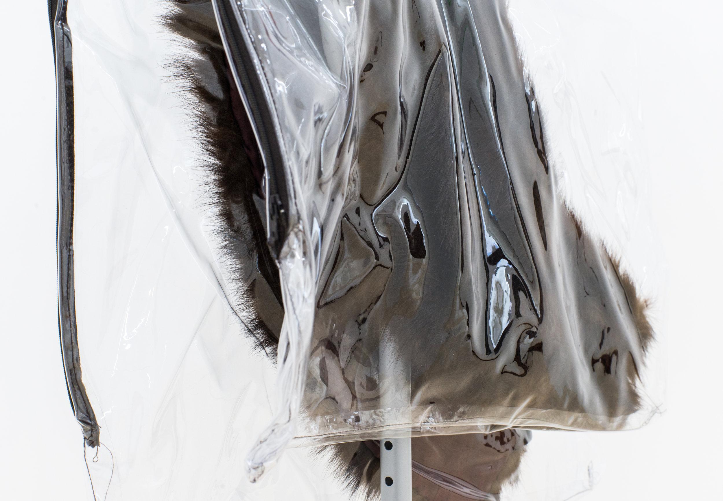 Wolf_Dreaming of Luxury 2 (detail).jpg