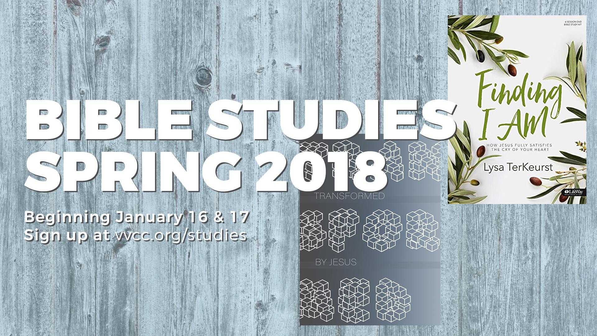 valley view dallas bible studies 2018
