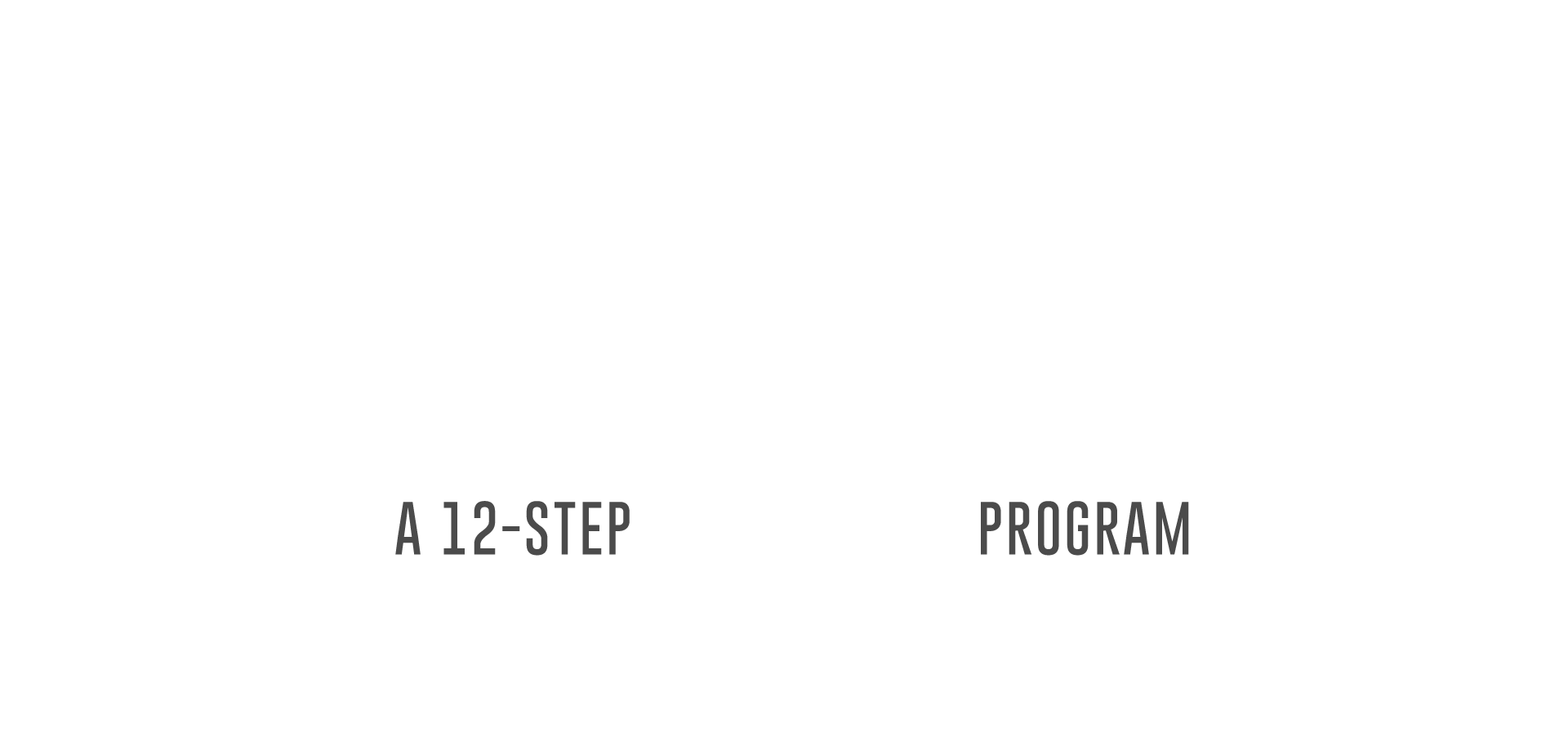 new life logo transparent.png