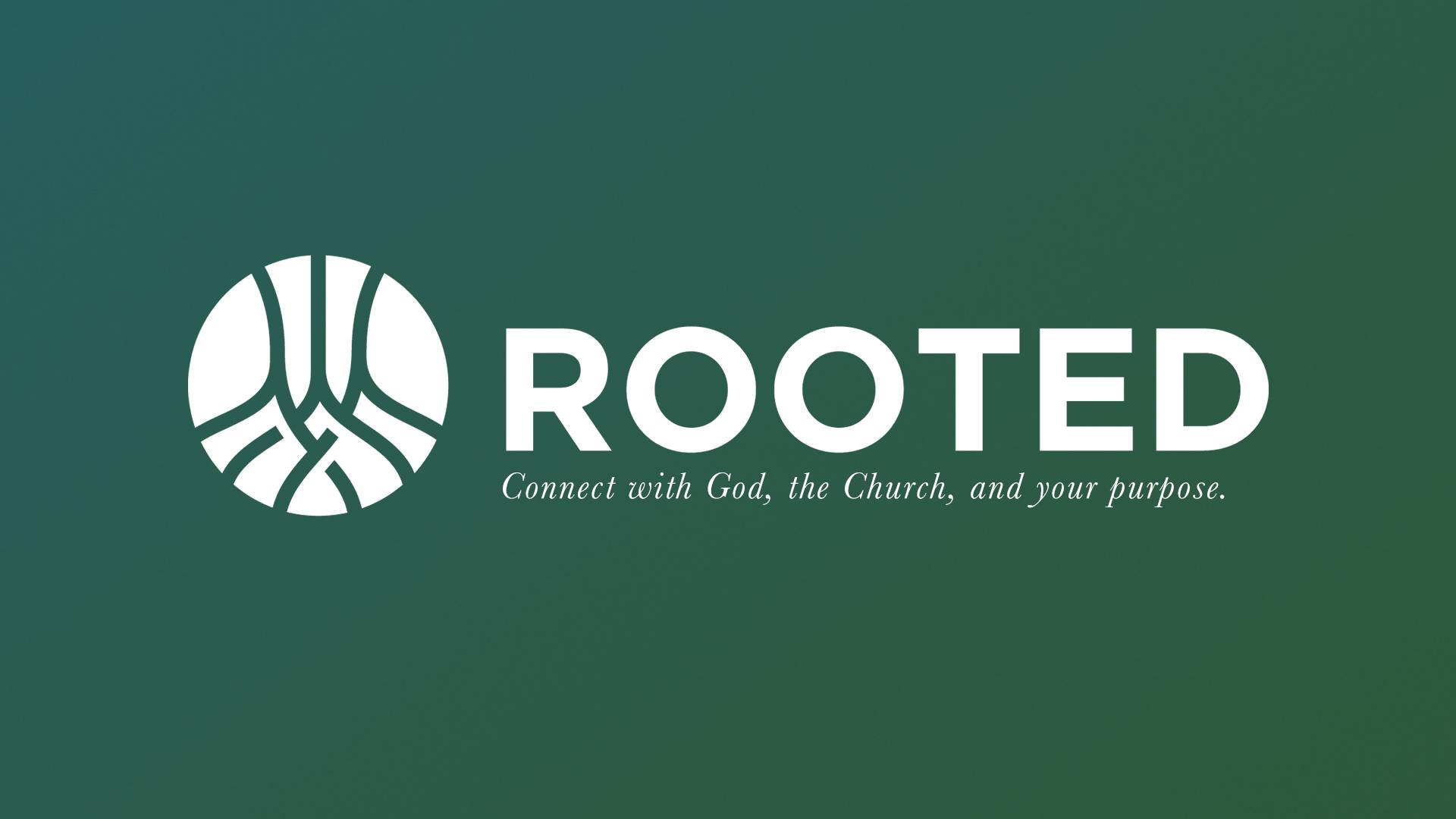 rooted groups dallas texas carrollton