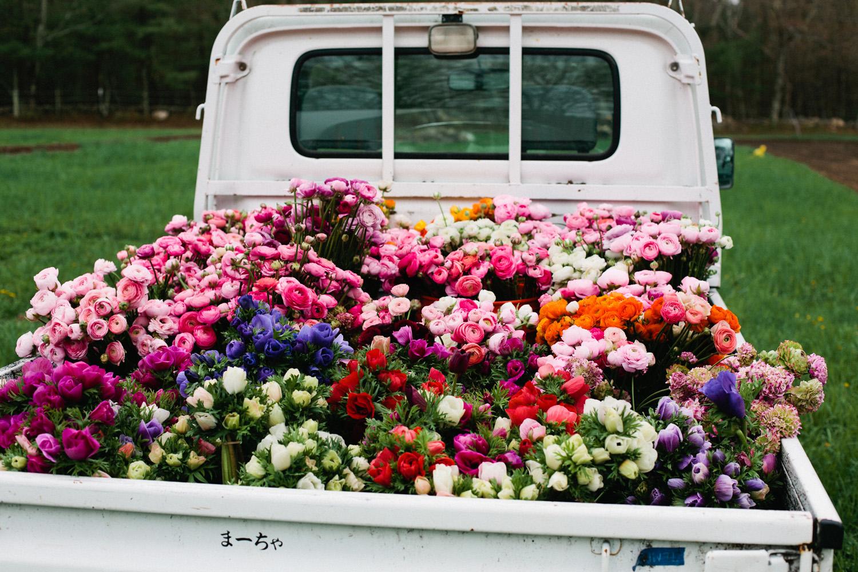 five_fork_farms_truck-2.jpg