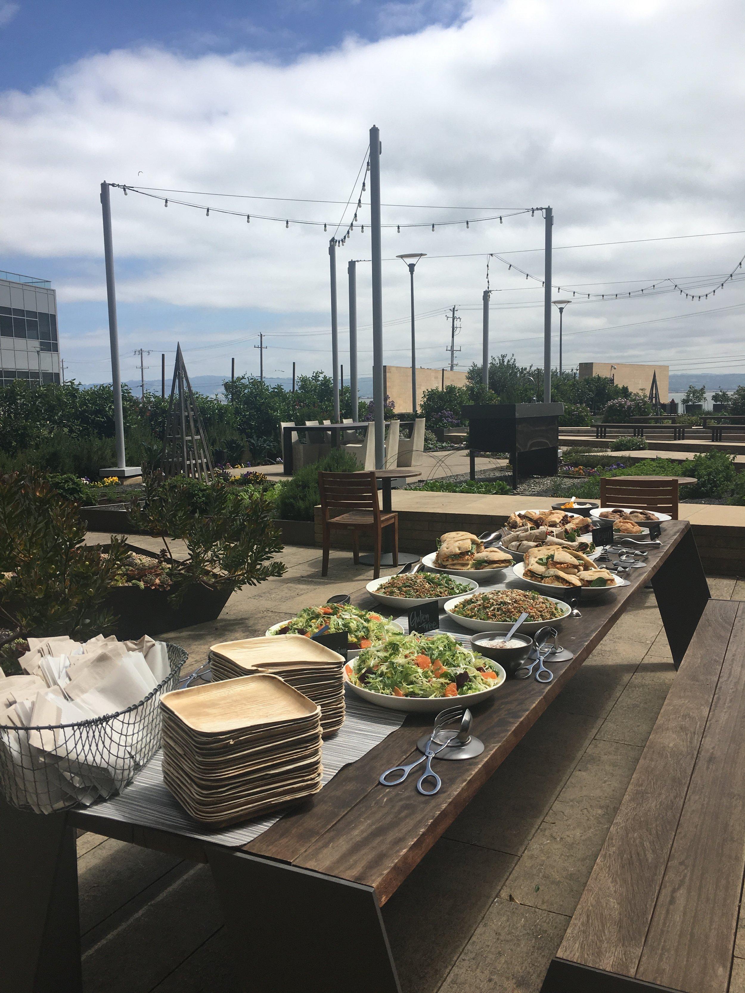 Catered lunch in Garden.jpg