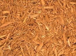 gold mulch.jpg