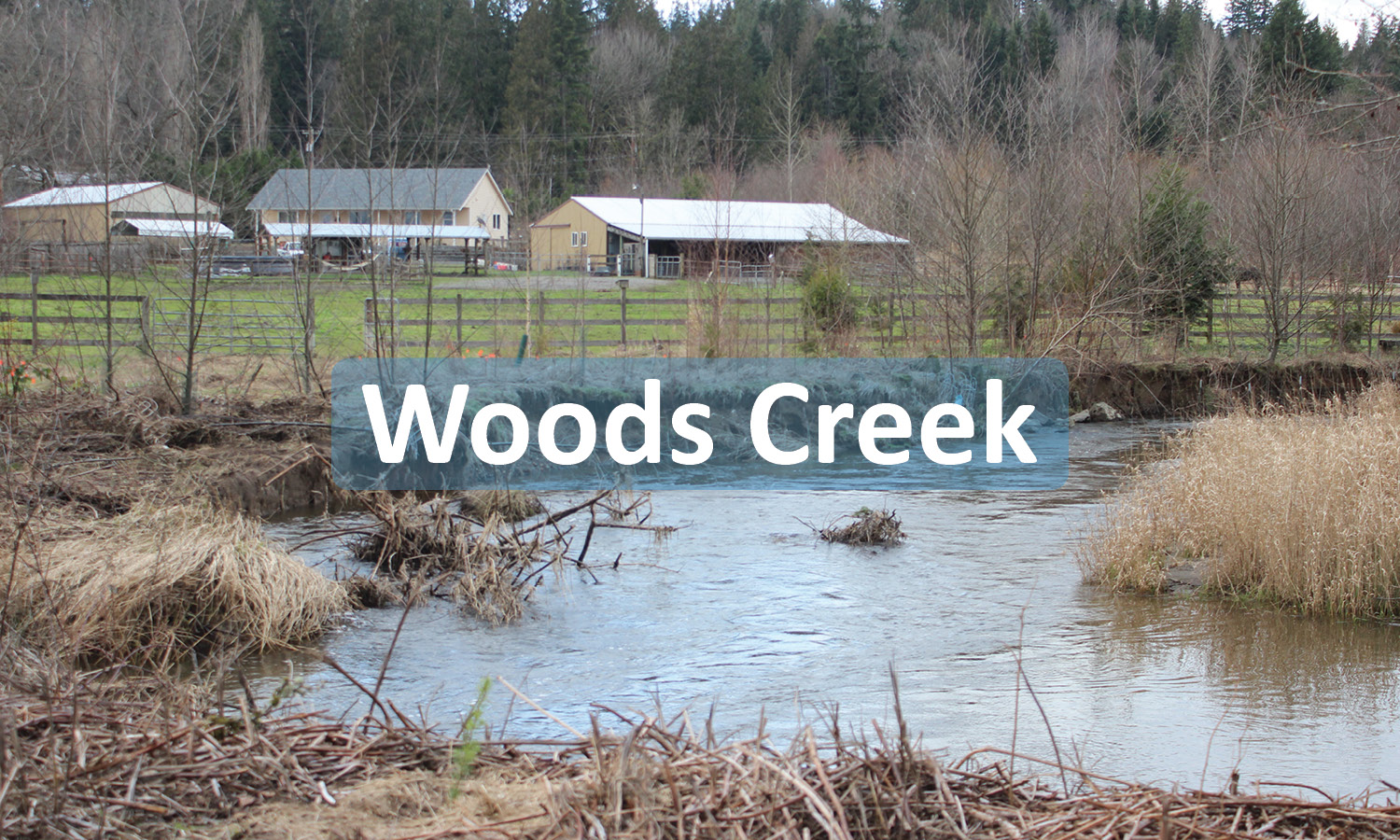 Woods Creek ProJect Button