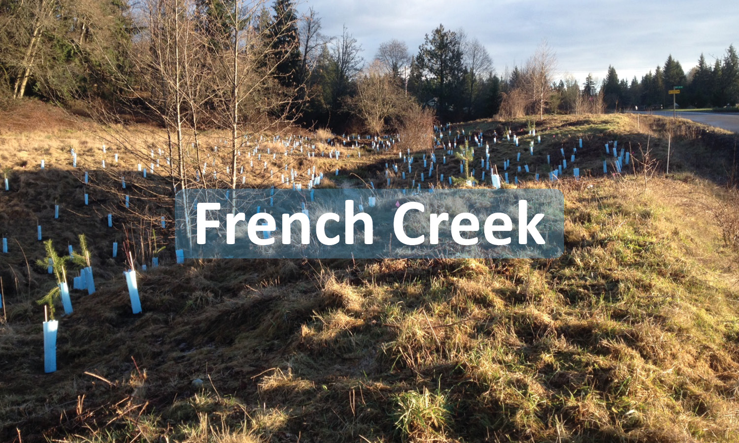 French Creek Project Button