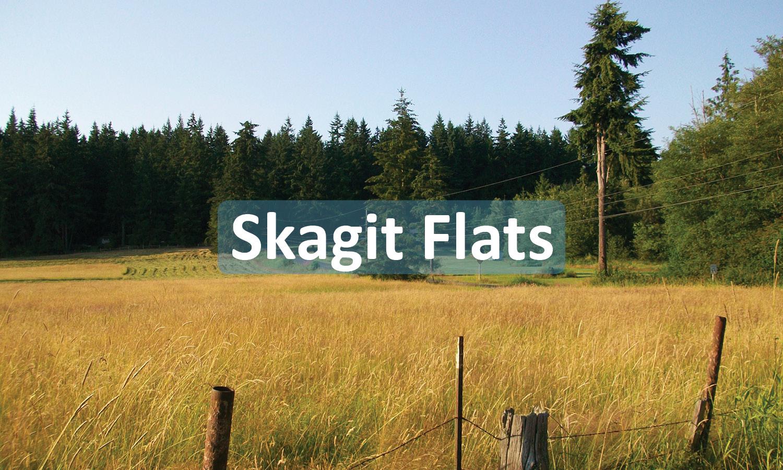 Skagit Flats PRoject Button