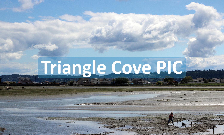 Triangle Cove PIC Project