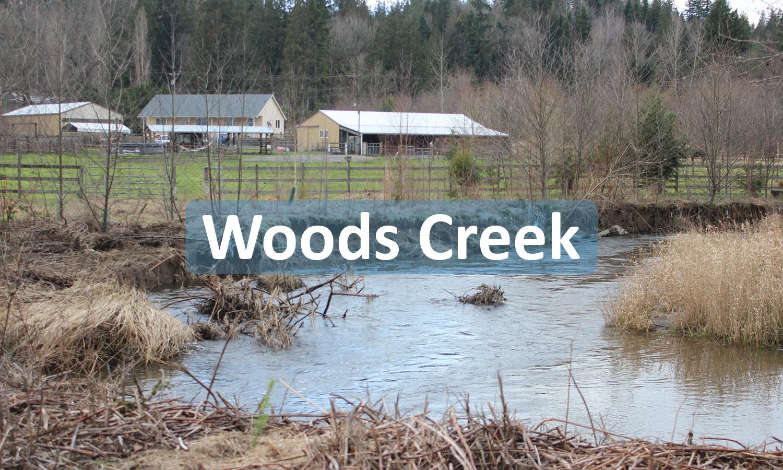 Woods Creek Project