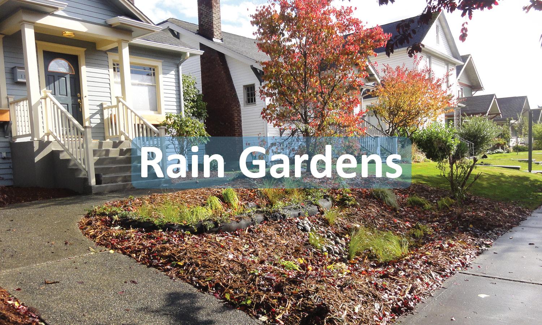 Rain Gardens Program Button