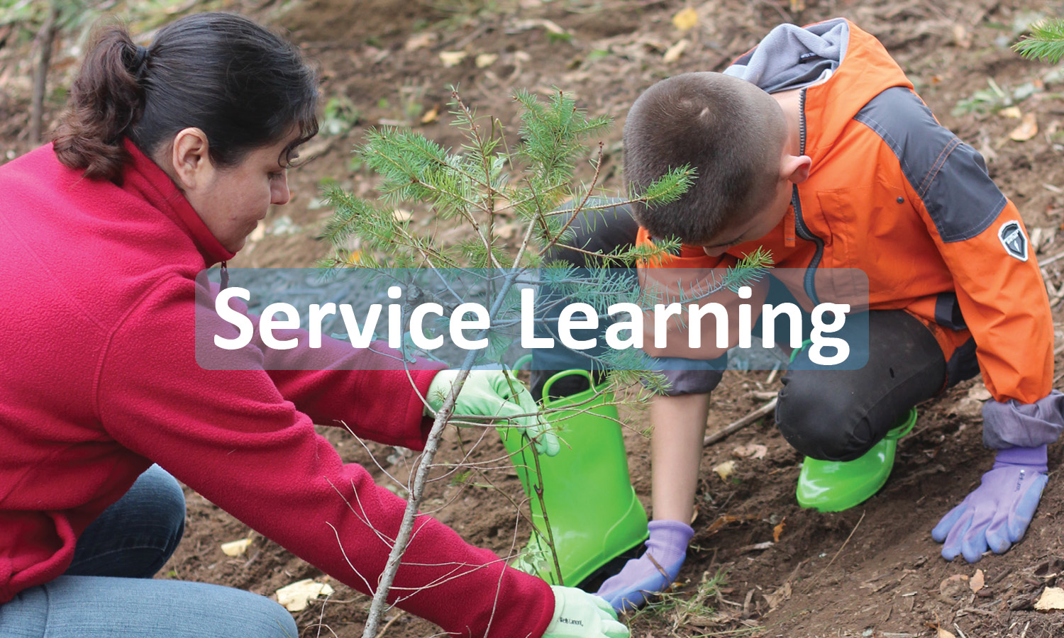 Service Learning for Community Groups and Schools Button