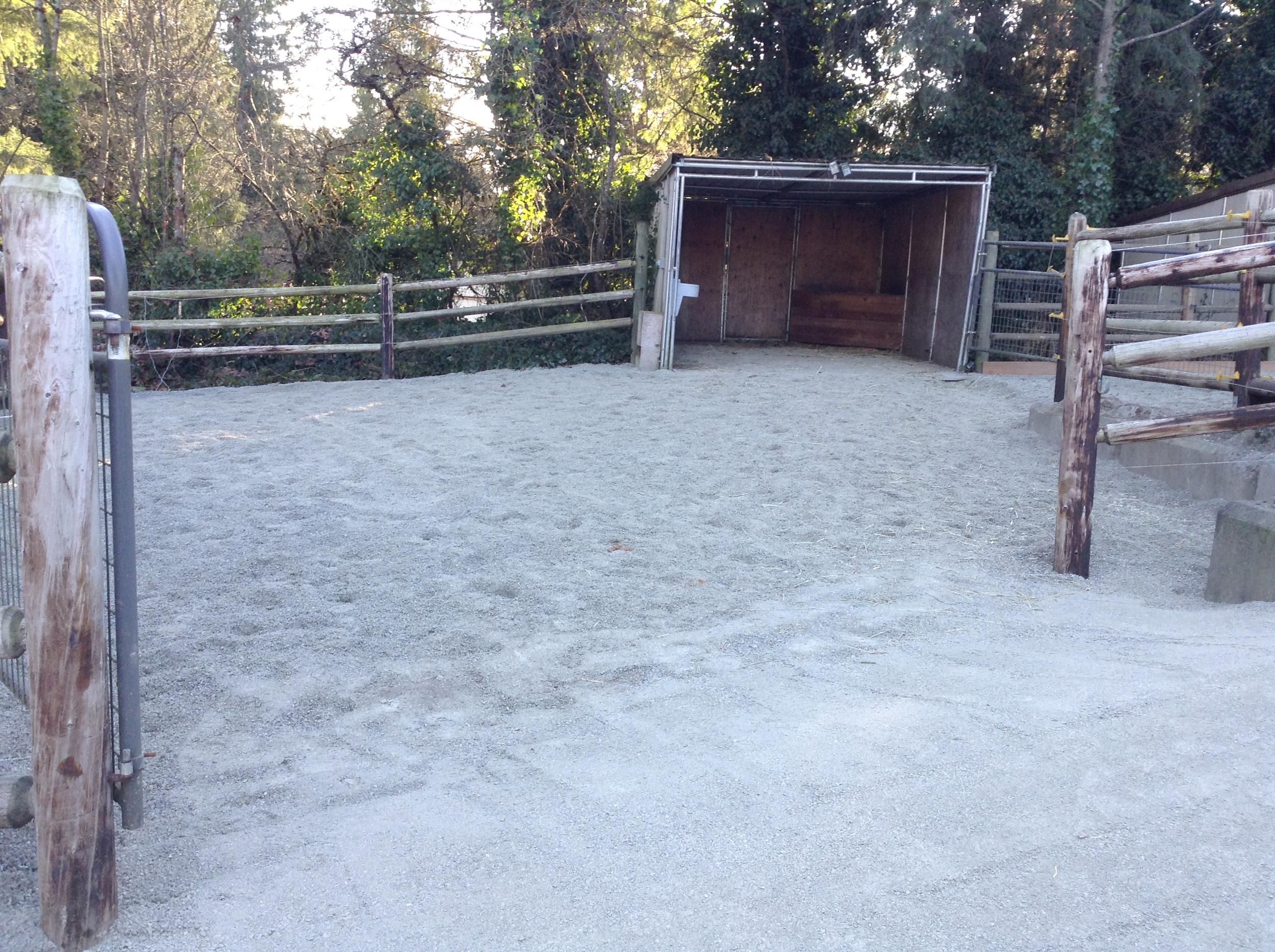 Finished paddock