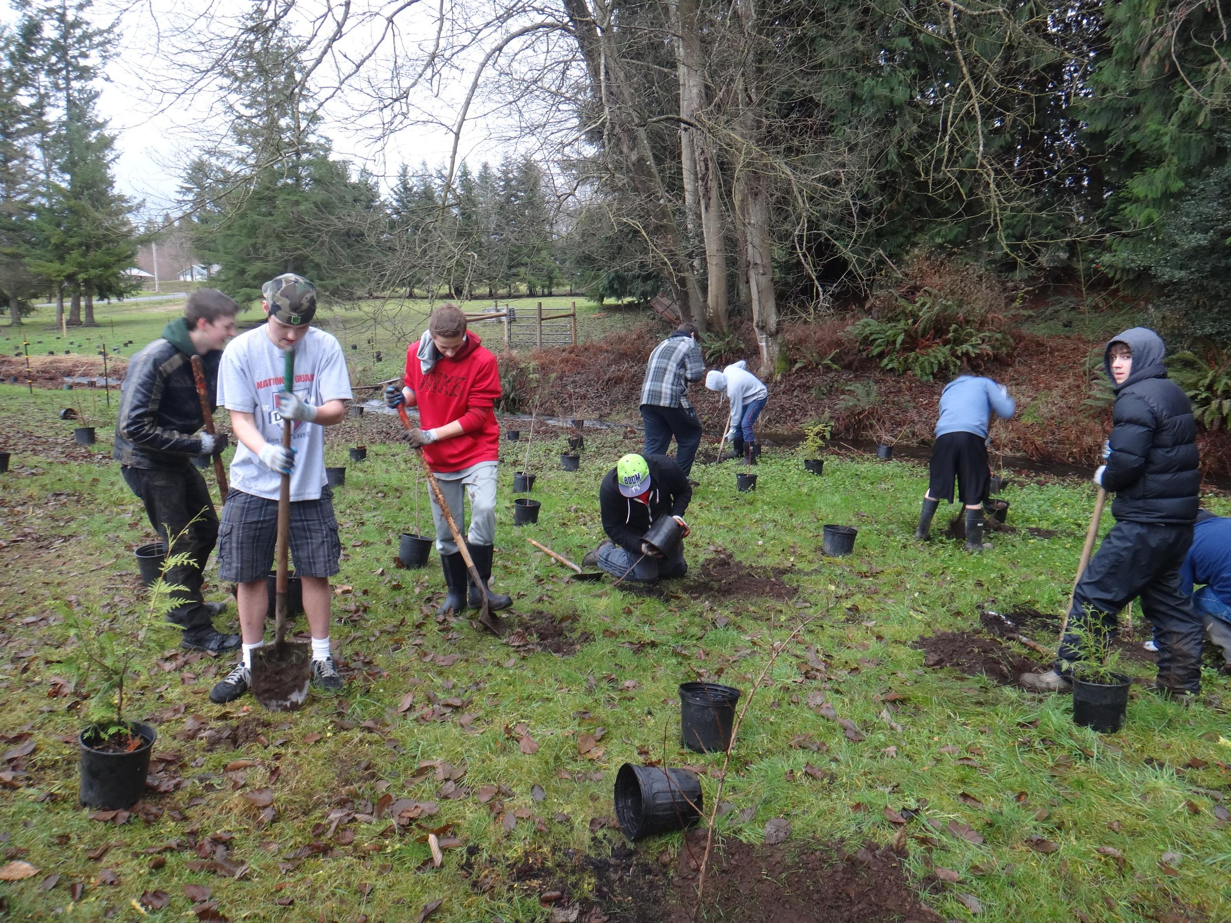 Volunteer planting3.JPG