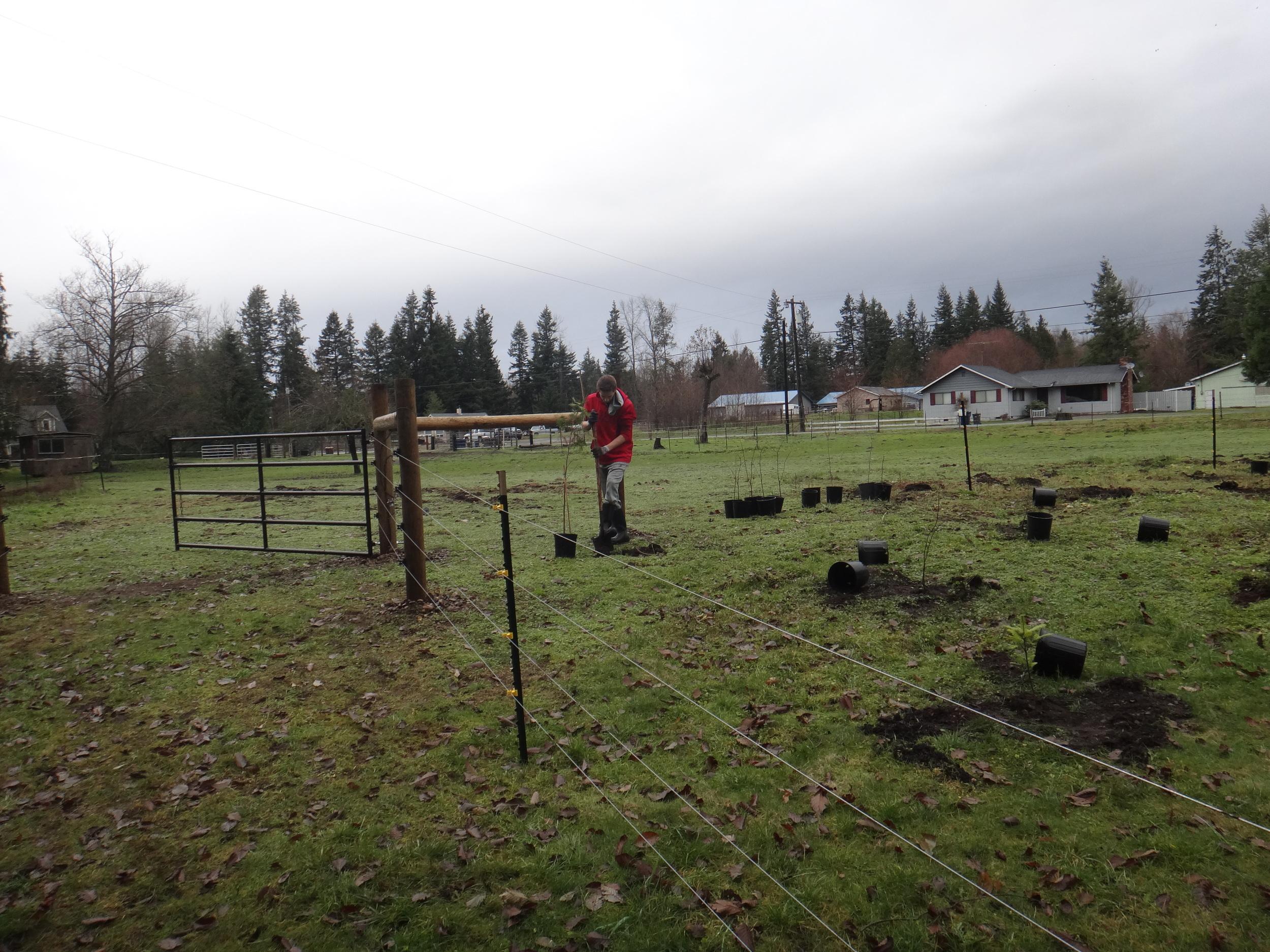 Volunteer planting5.JPG