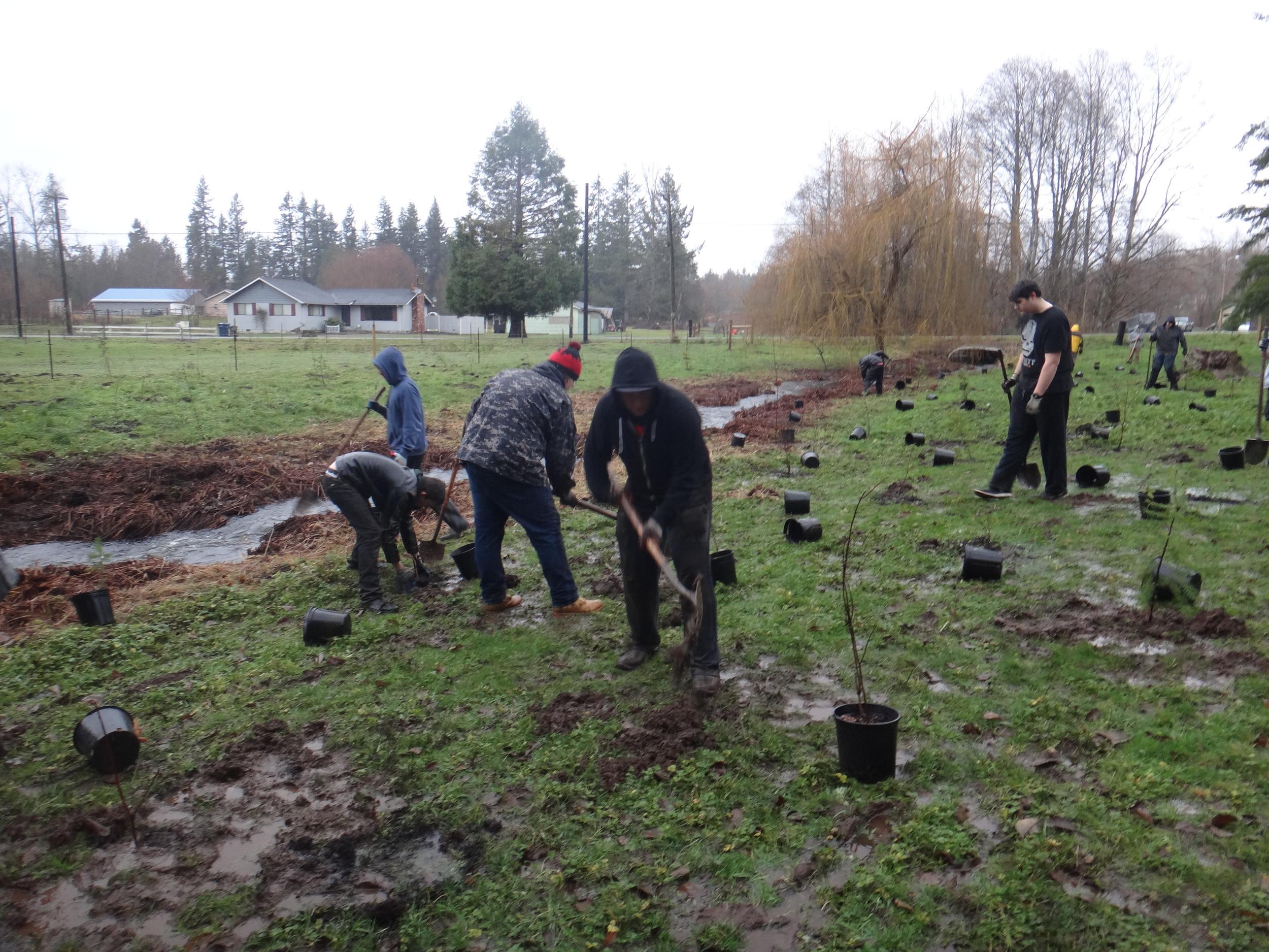 Volunteer planting10.JPG