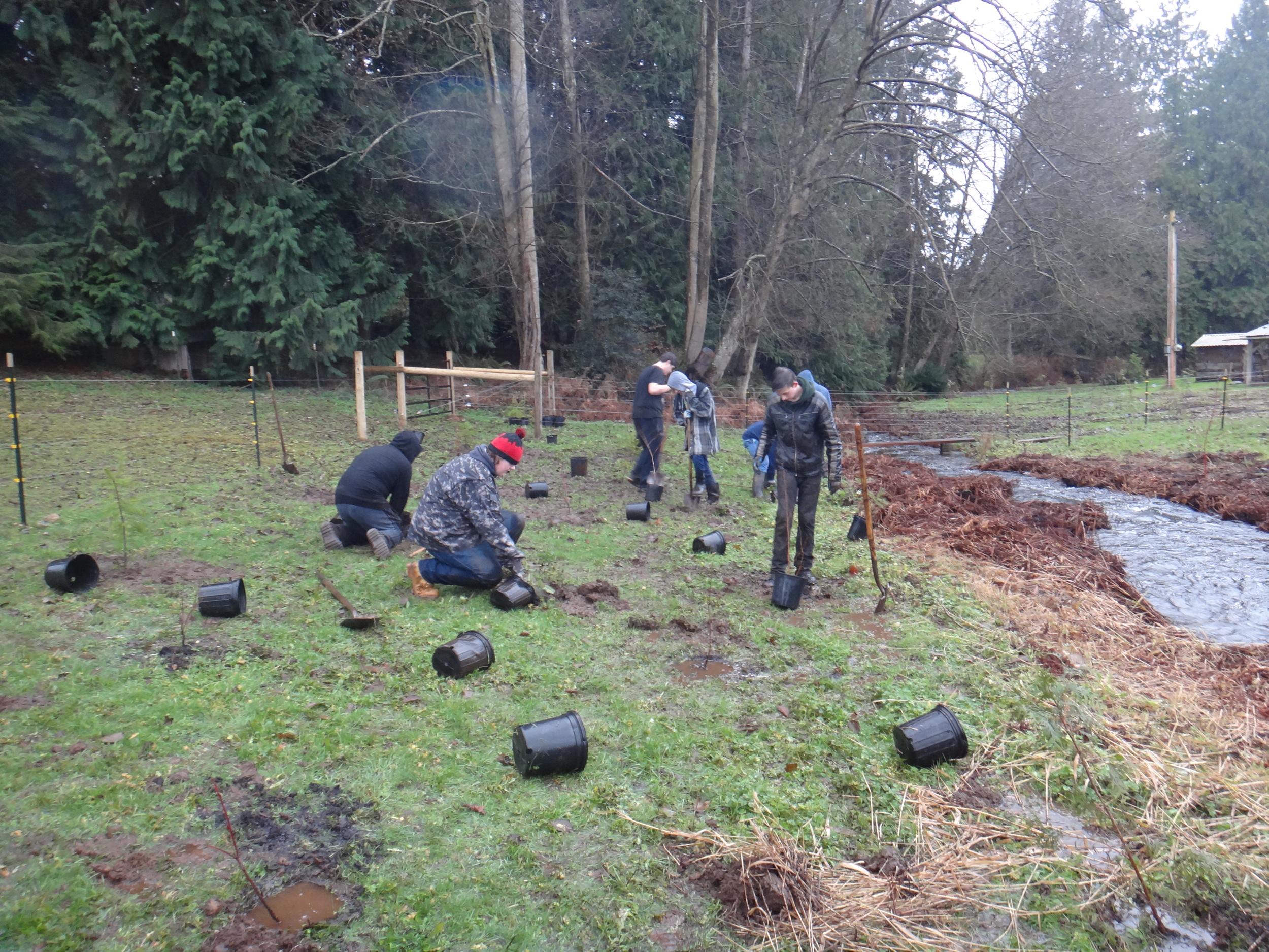 Volunteer planting11.JPG