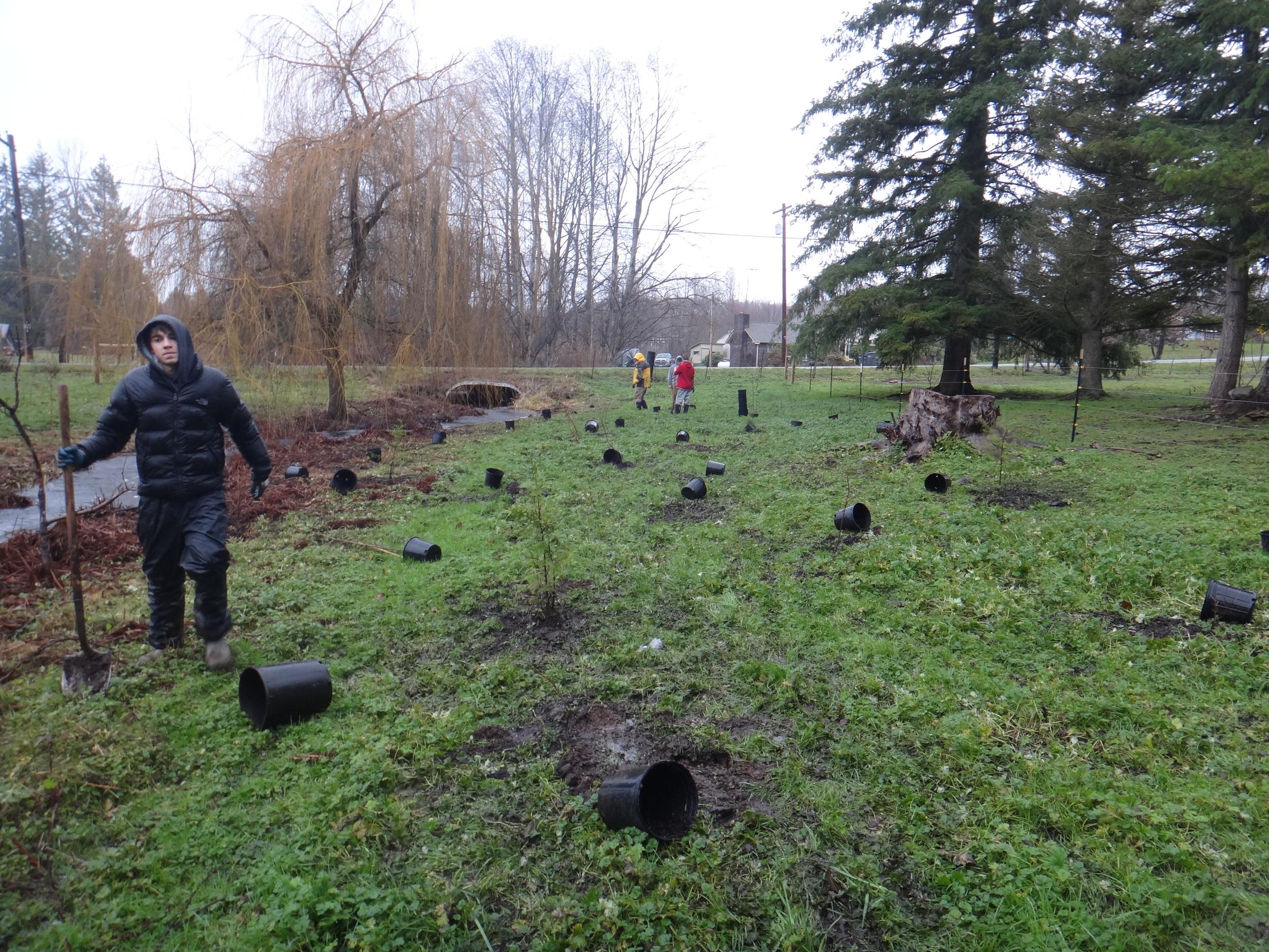 Volunteer planting12.JPG