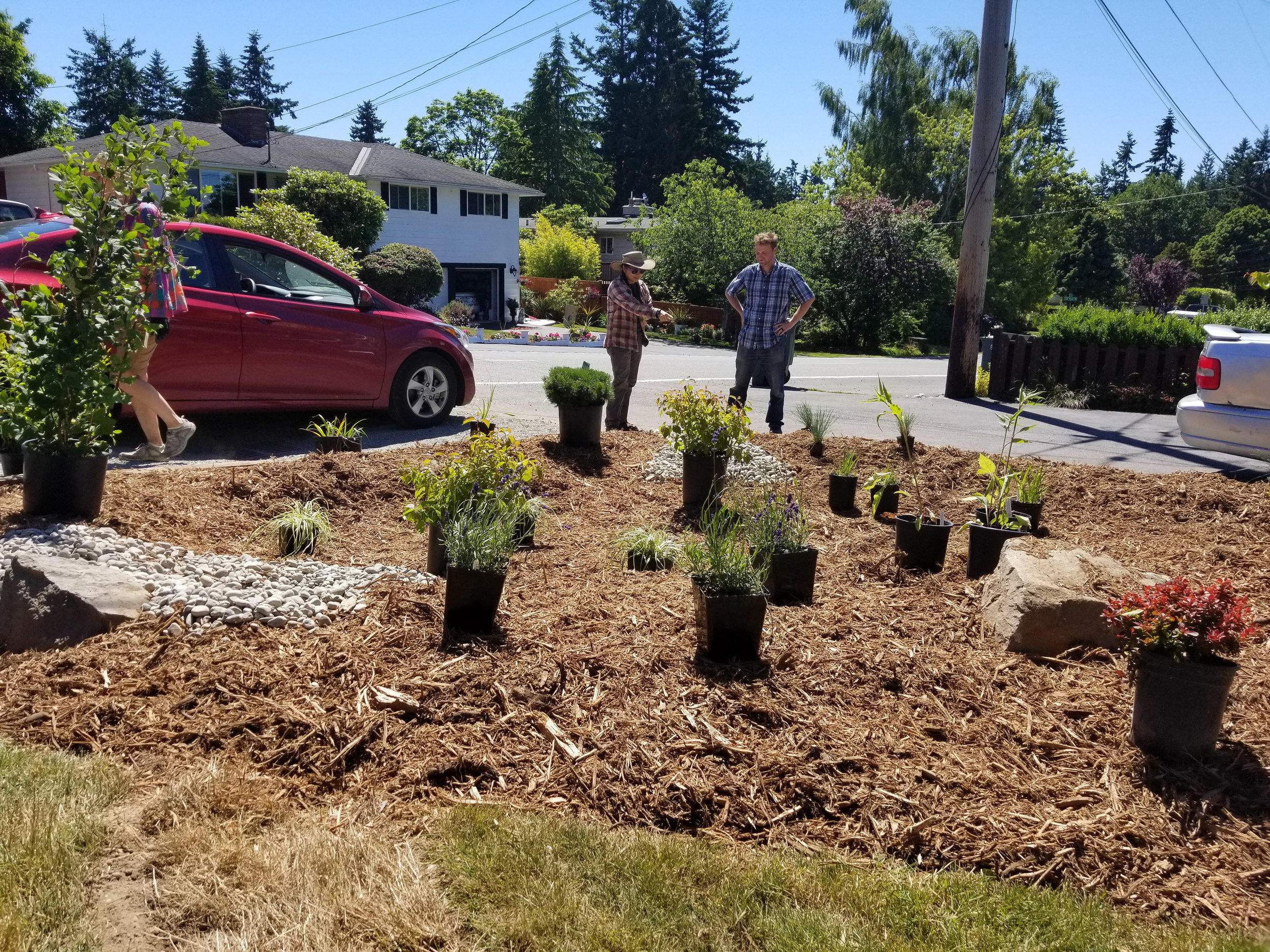 Lynnwood-WCC-Planting-145602-Derek.jpg
