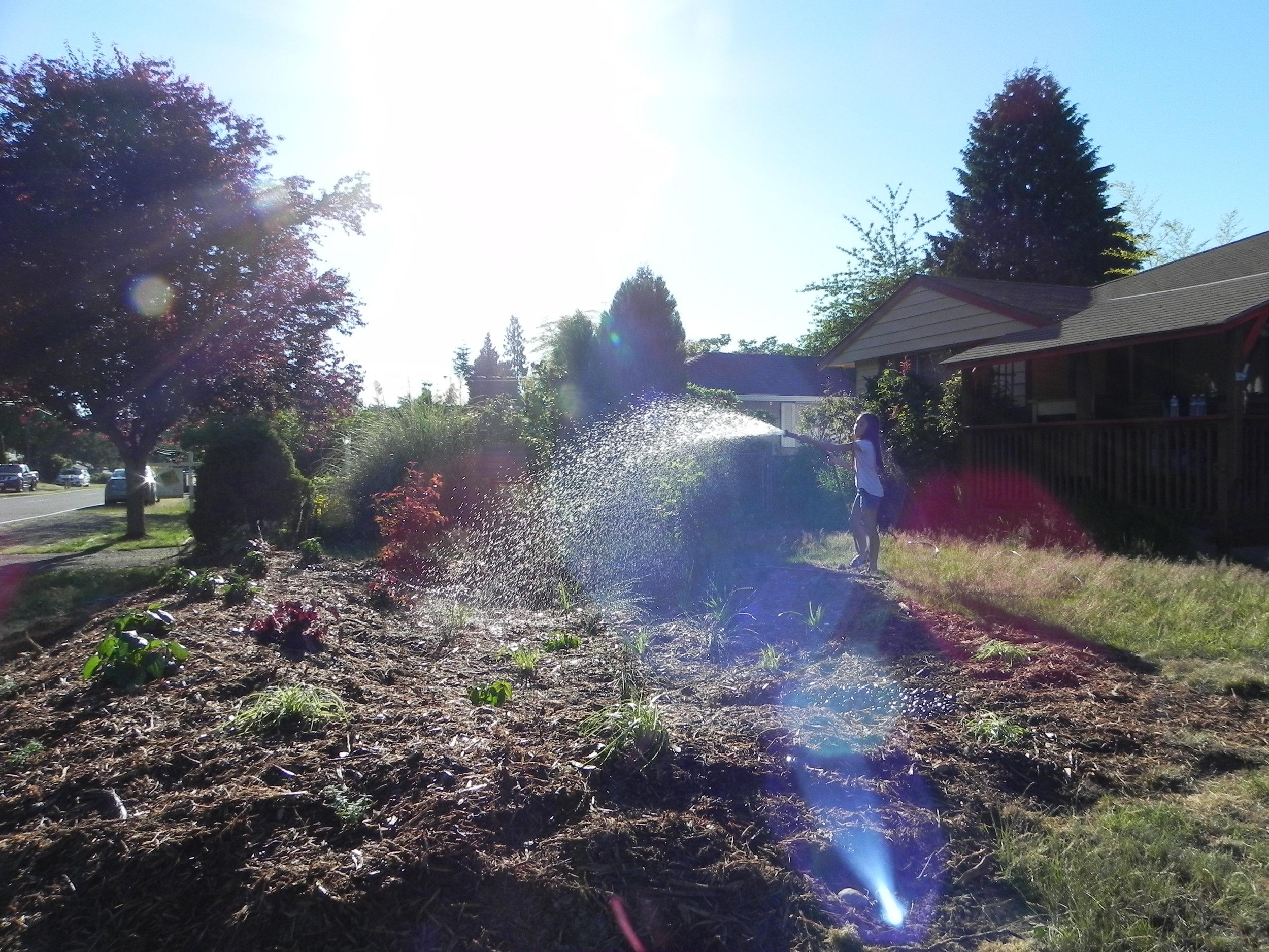 Lynnwood-WCC-Planting-0519-Watering.jpg
