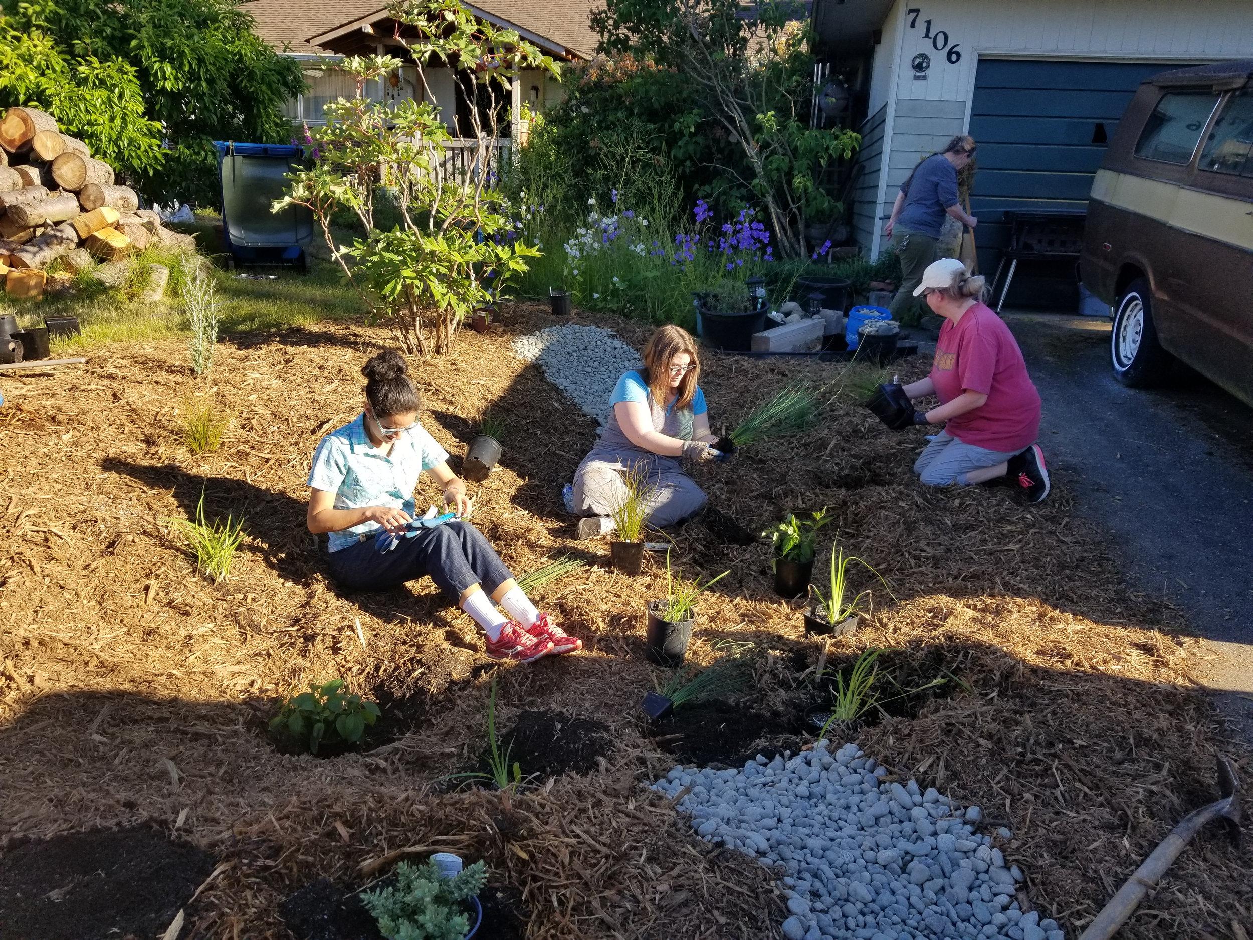 Lynnwood-WCC-Planting-183642-PLANTING.jpg