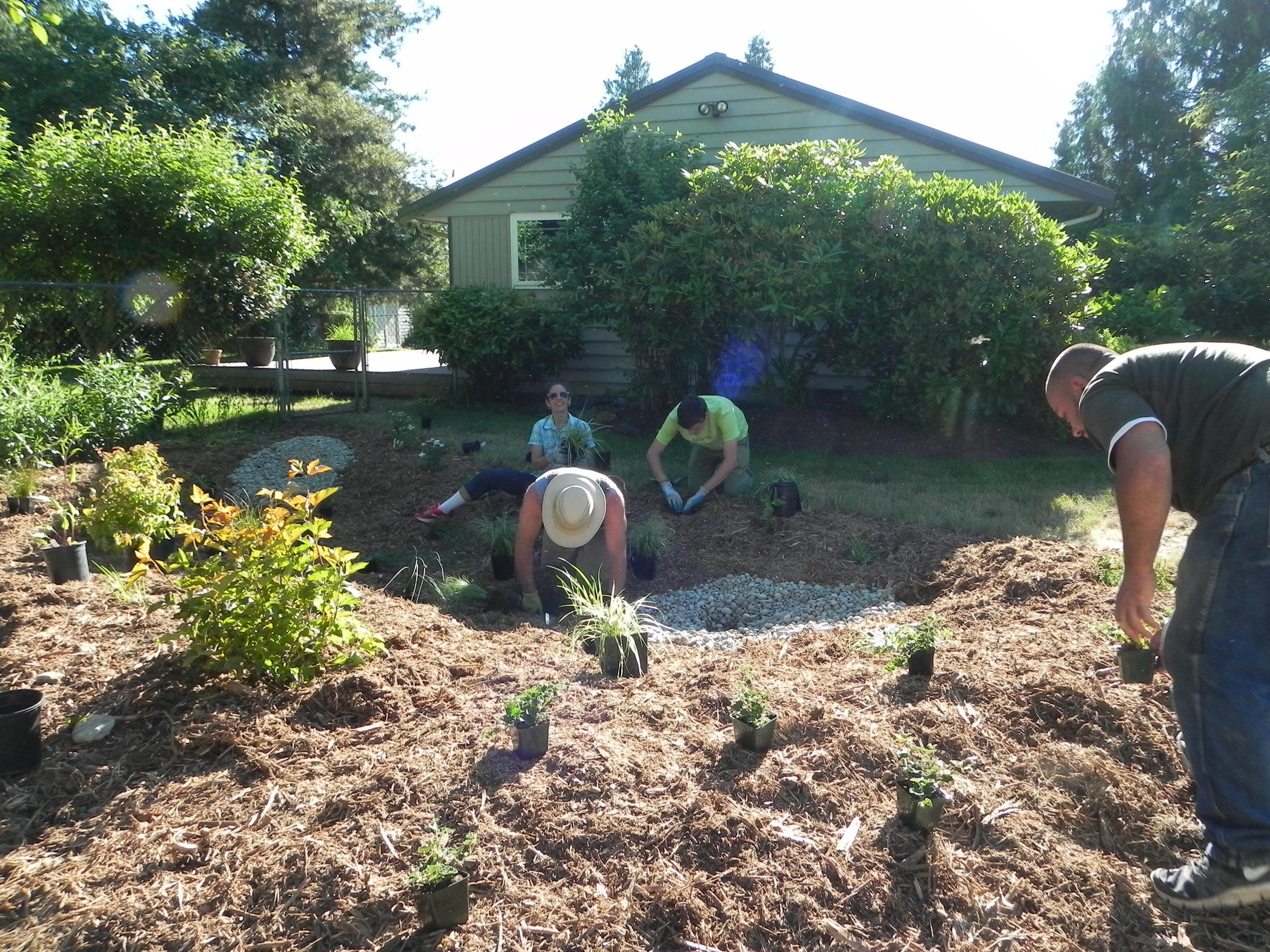 Lynnwood-WCC-Planting-0490-PLANTING.jpg